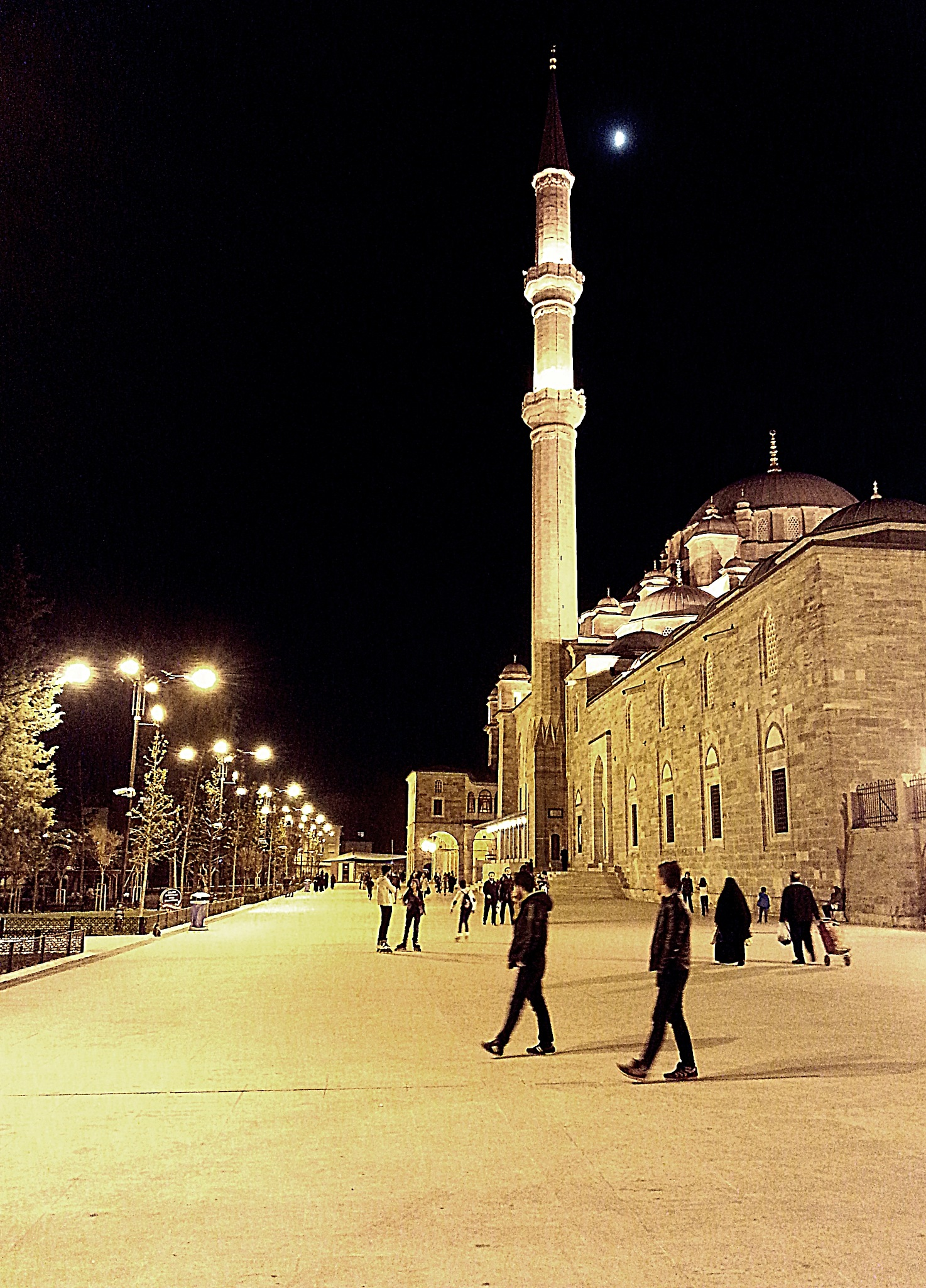 Fatih Mosque by Demet Alper