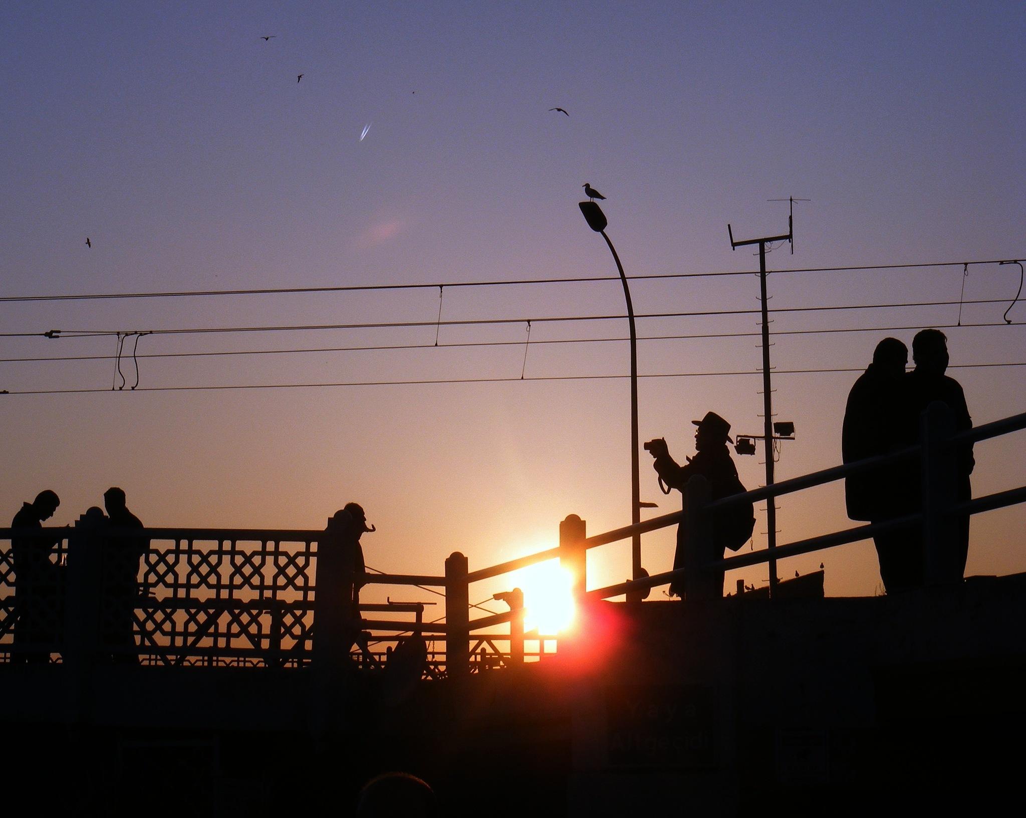 Sunset/2013 by Demet Alper