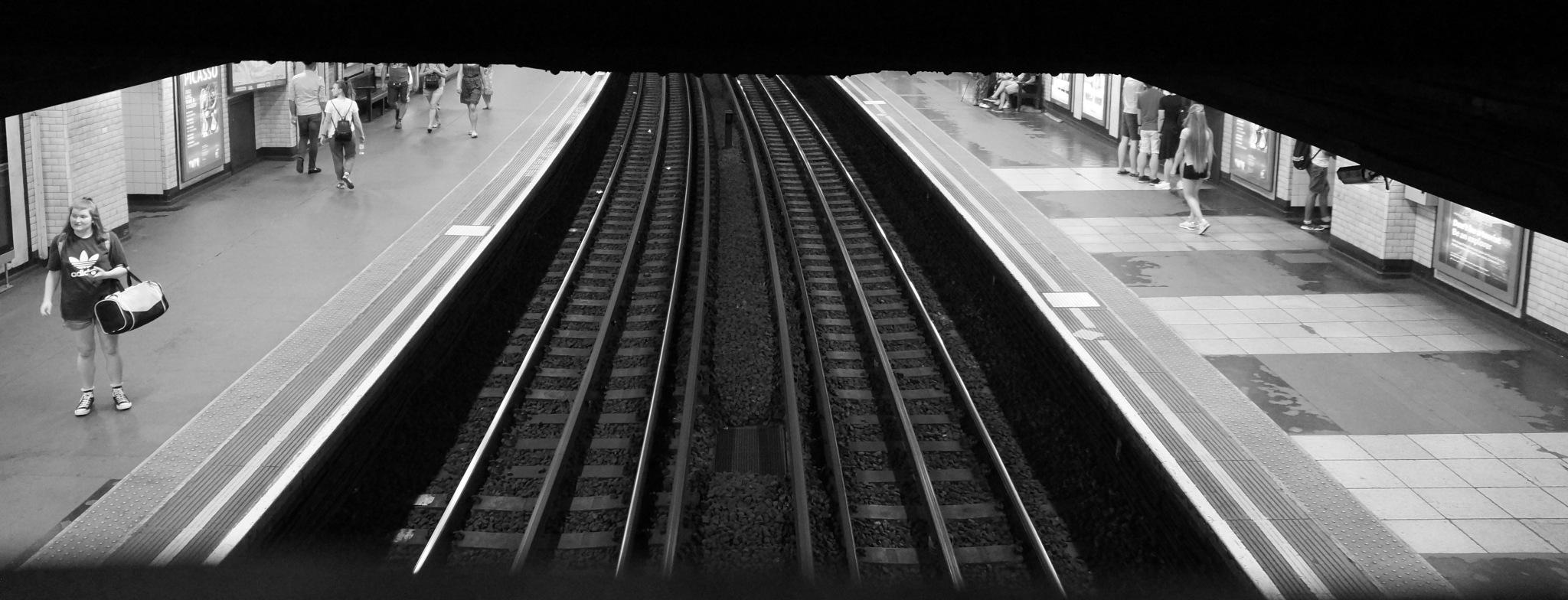 Above the Tube Lines by steve_whitmarsh