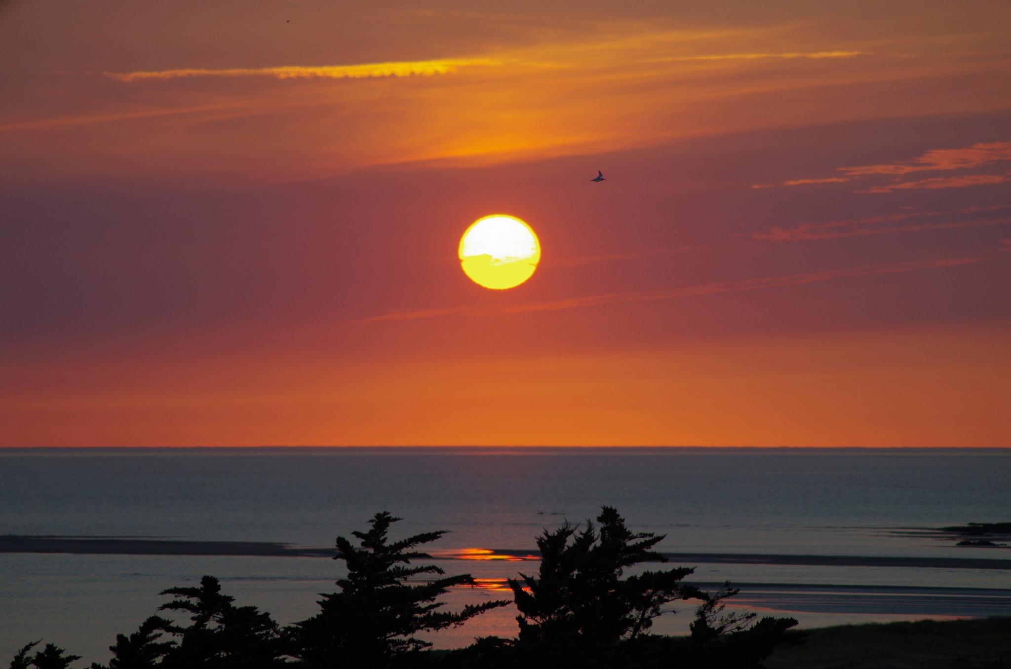Coucher de soleil sur la plage  by Plume photo