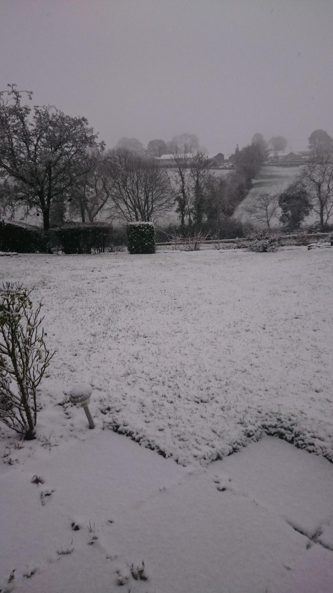 snowing  by adzamrx3