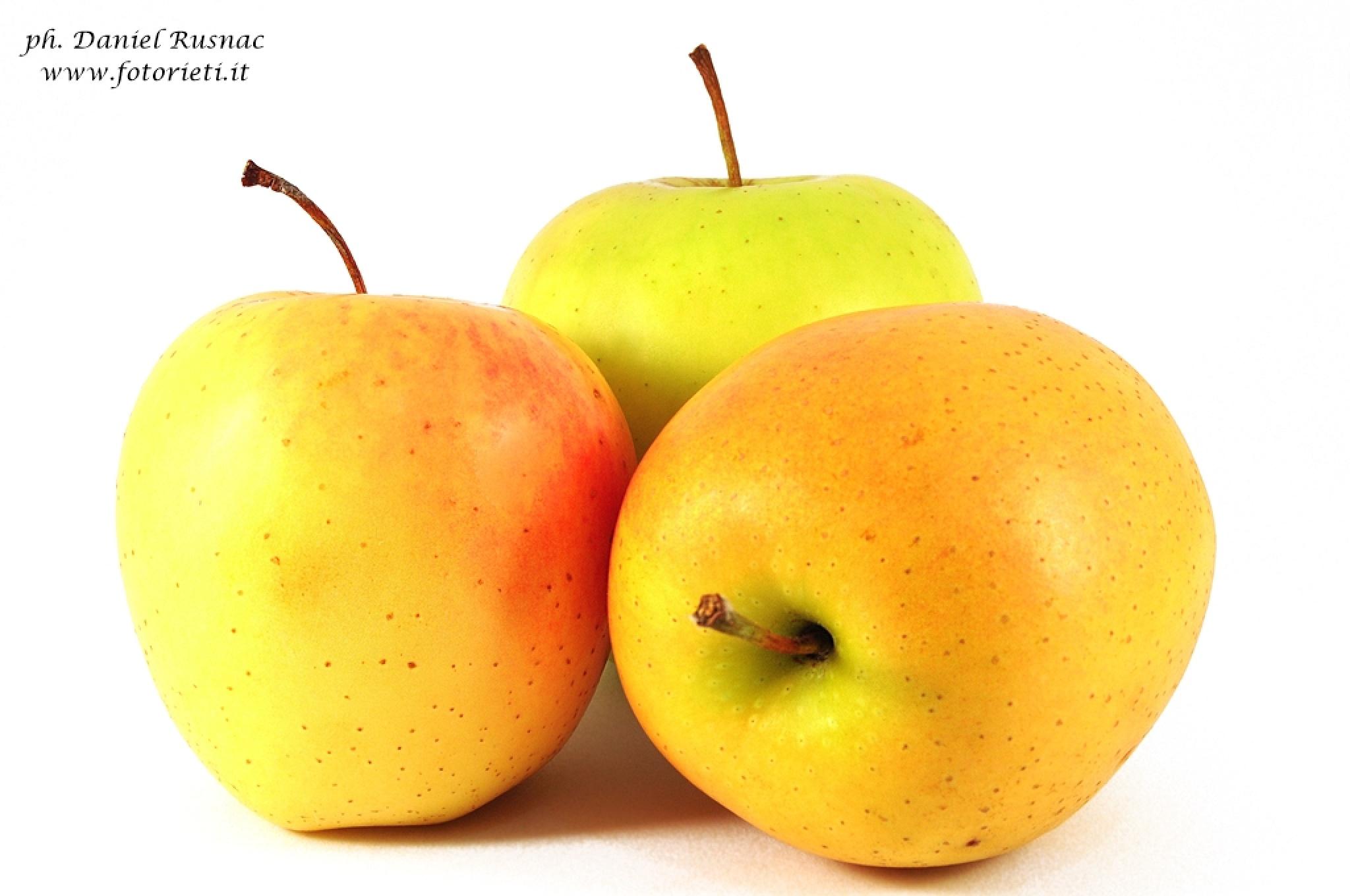 Apples by Daniel Rusnac di Fotorieti