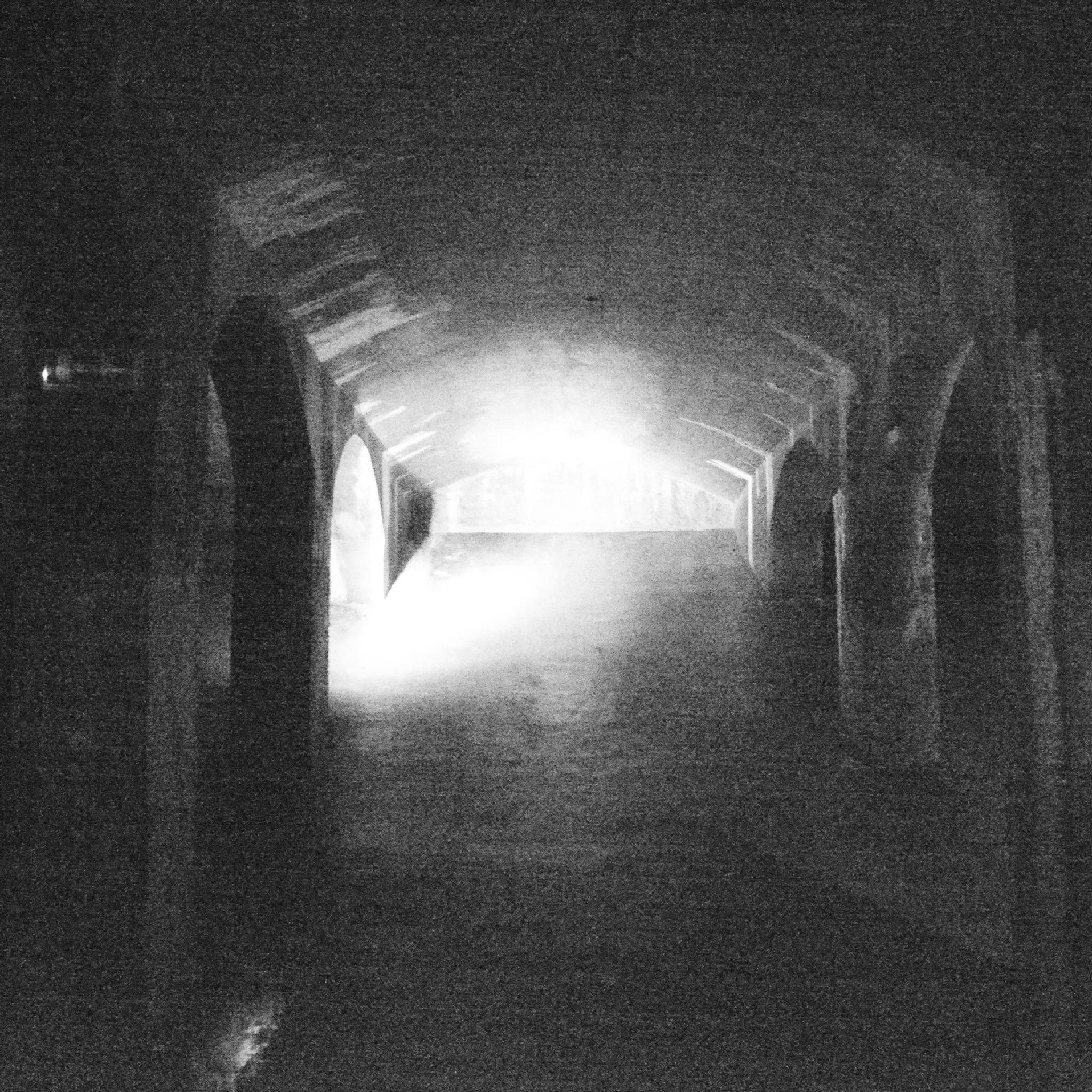 Dark. by Dorit Bach