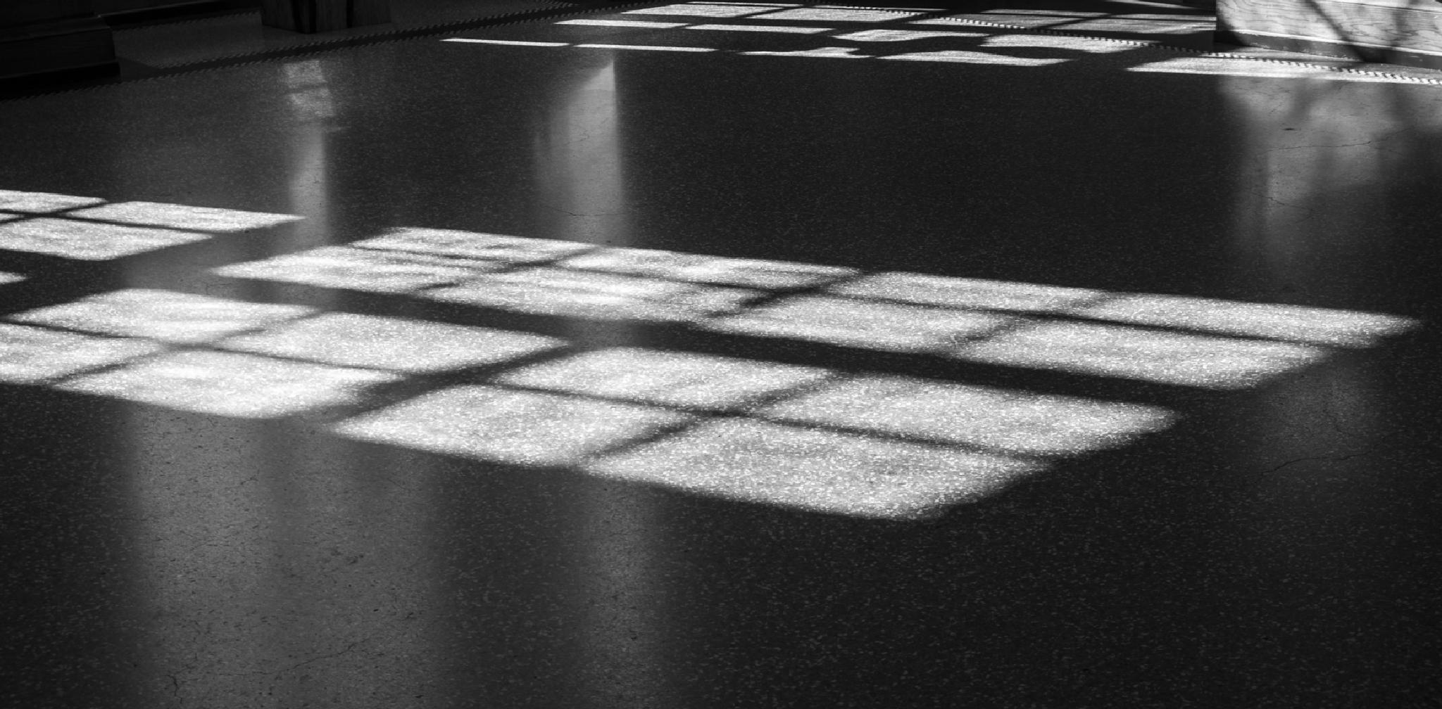 Shadows by Dorit Bach