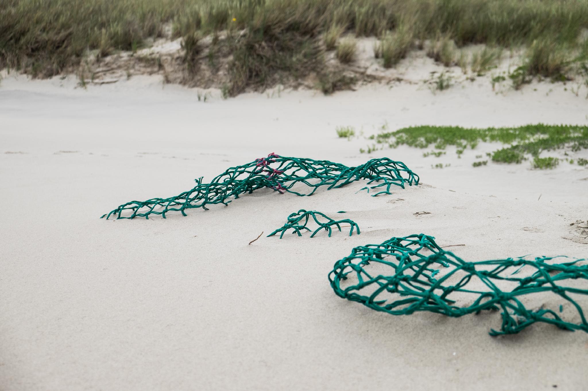Green. by Dorit Bach