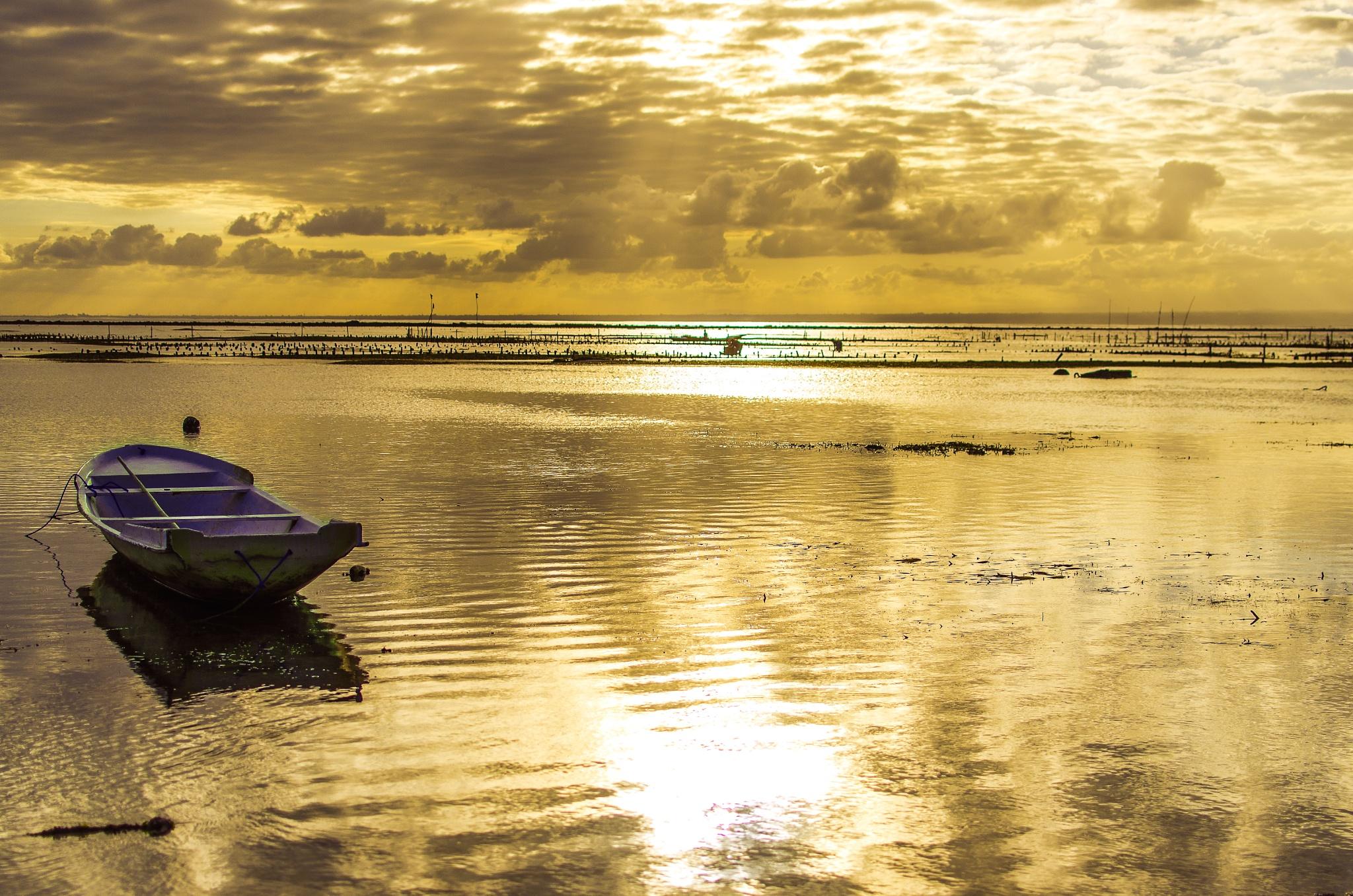 Serenity  by Rodrigo Oliveira