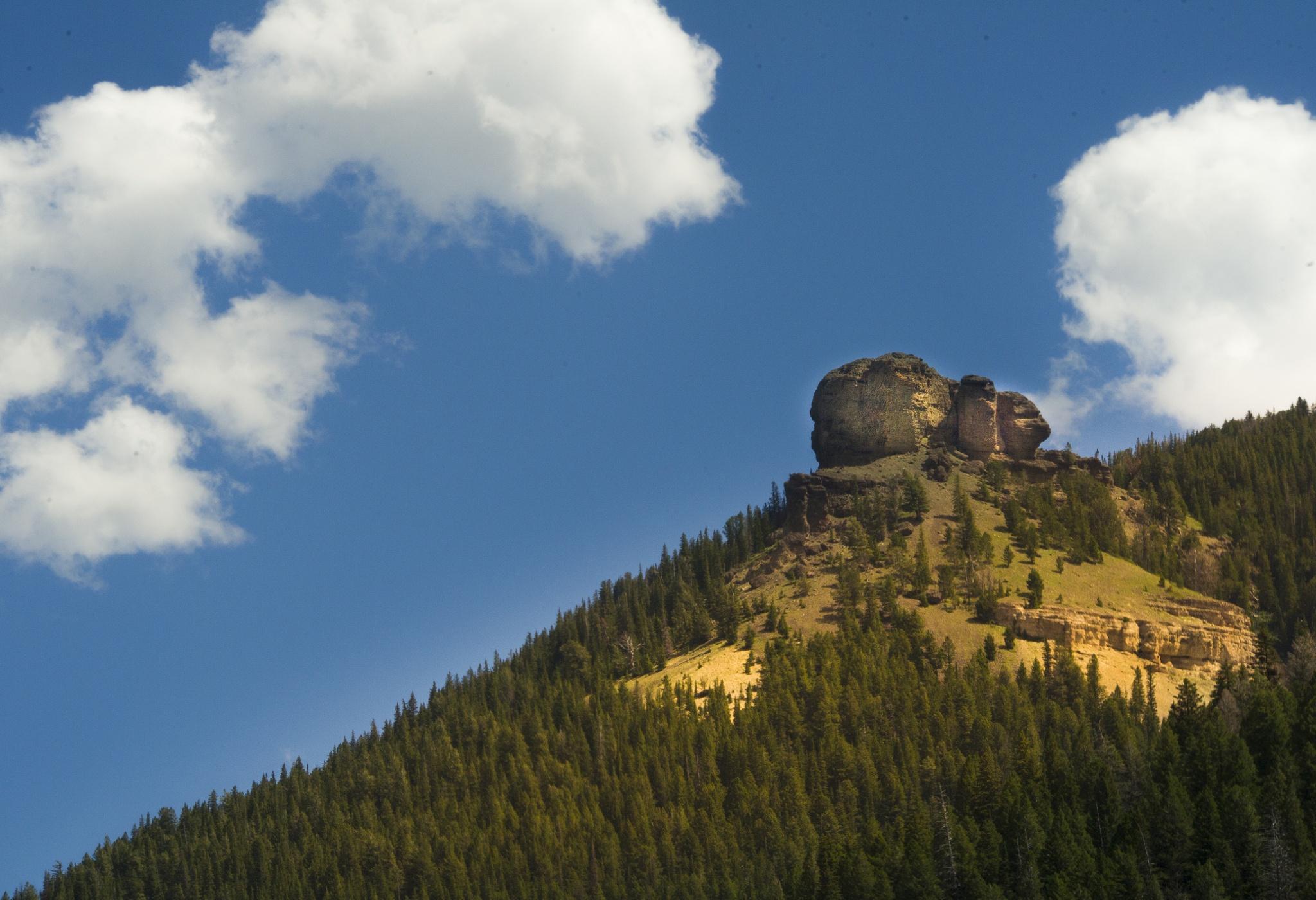 Hill top by Frans van Heerden
