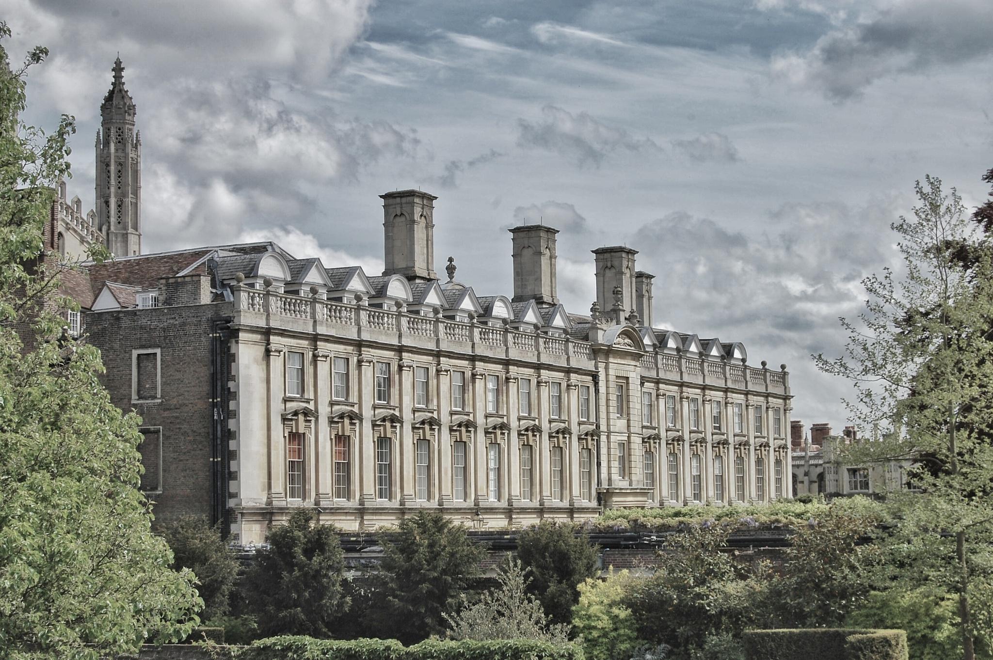 Cambridge Backs by Darren Welch