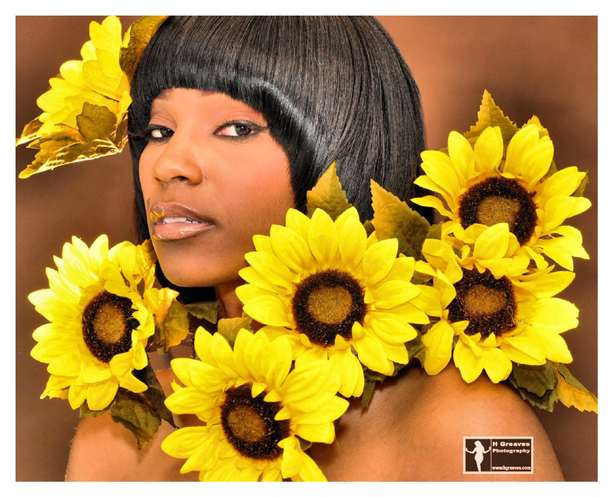 Sunflower by Harold HGreavesphotography Greaves