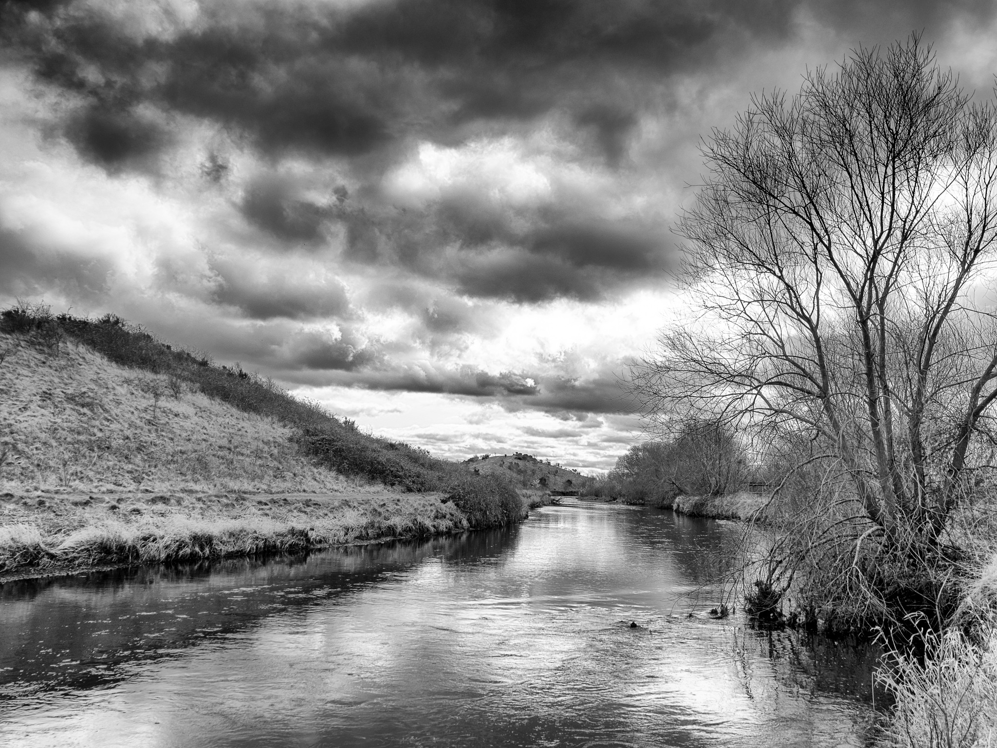 River Tame by Sarah Walters
