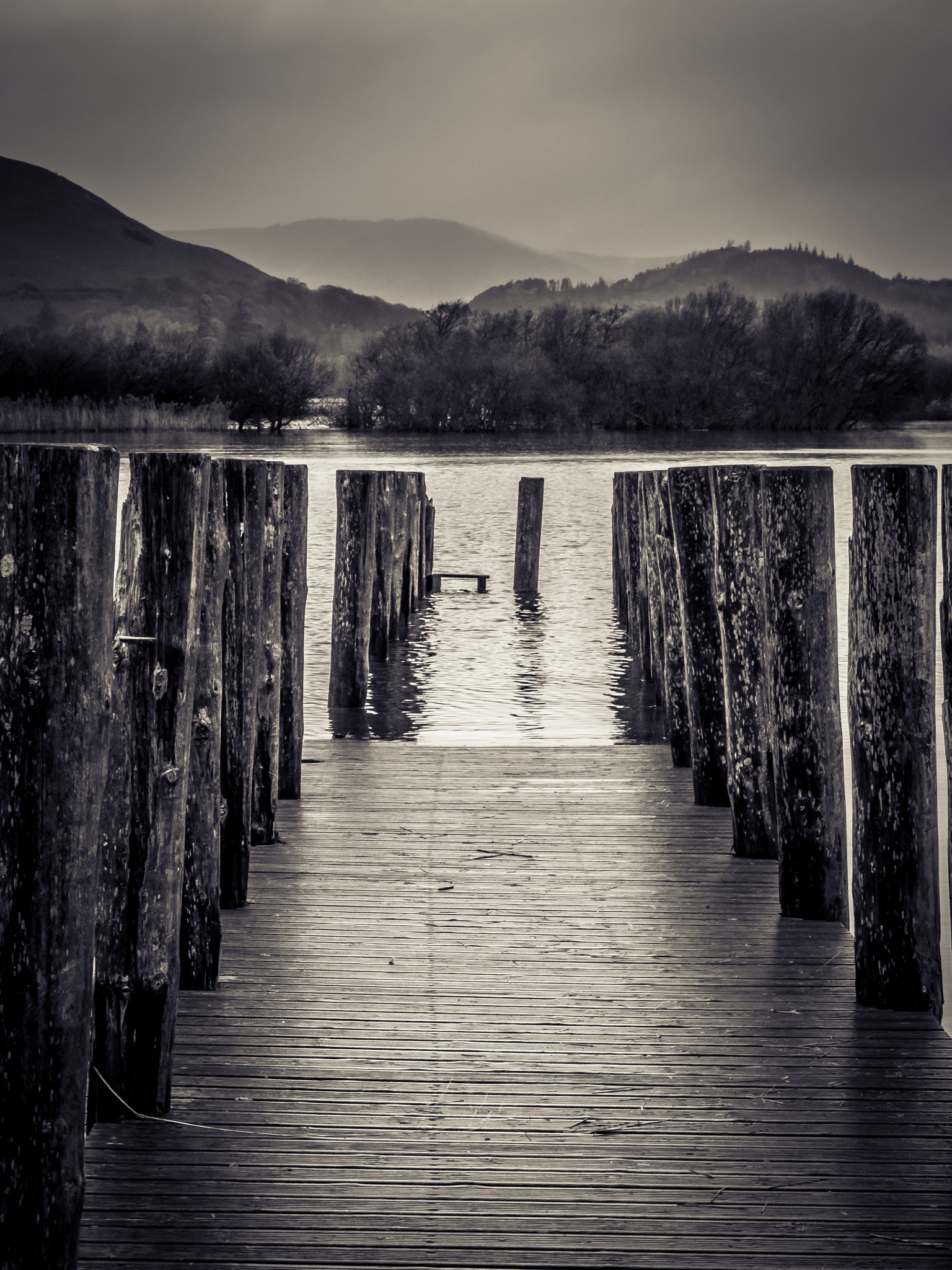 Photo in Landscape #jetty #water #lake #landscape #black and white