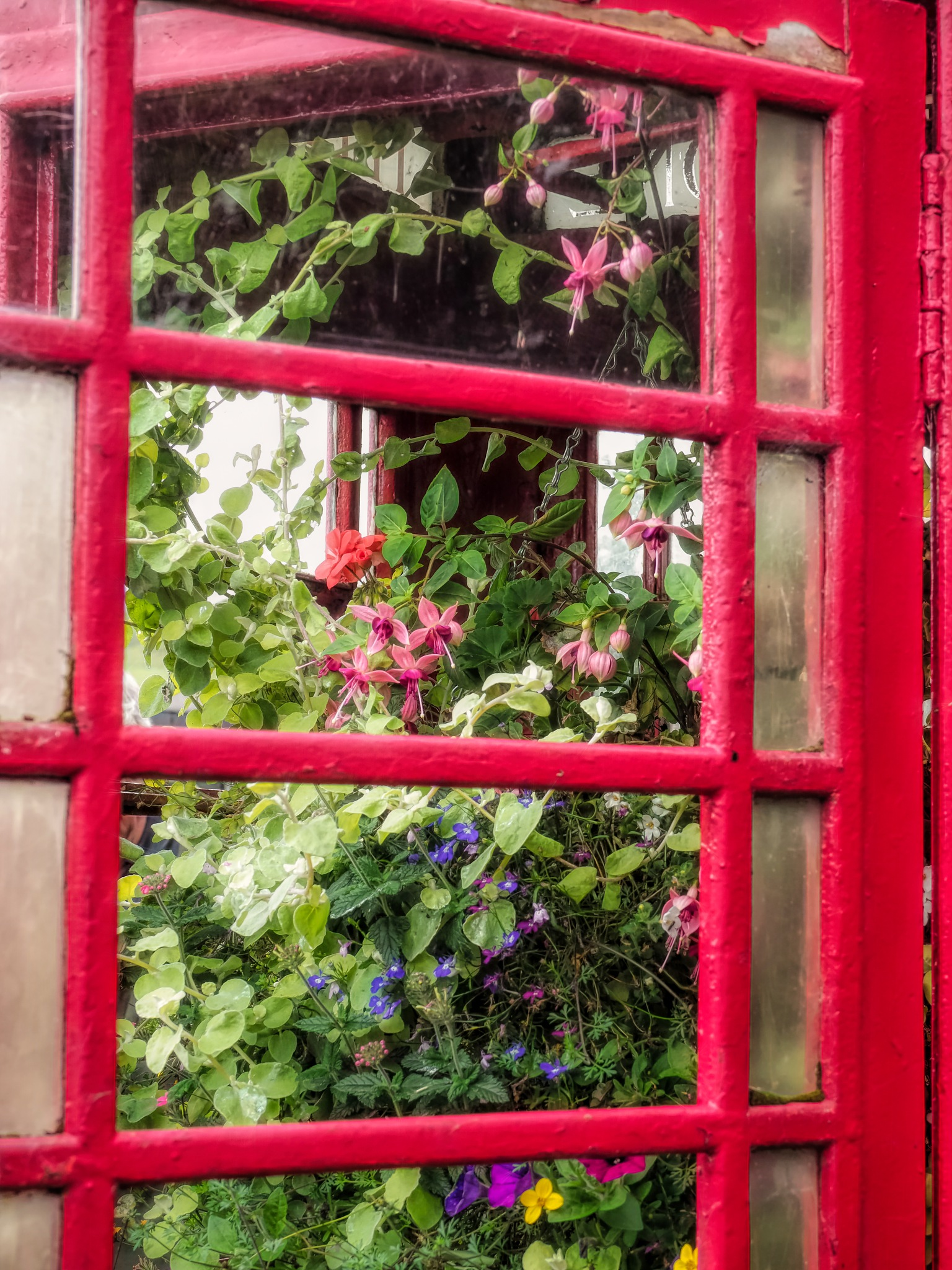 Telephone Box by Sarah Walters