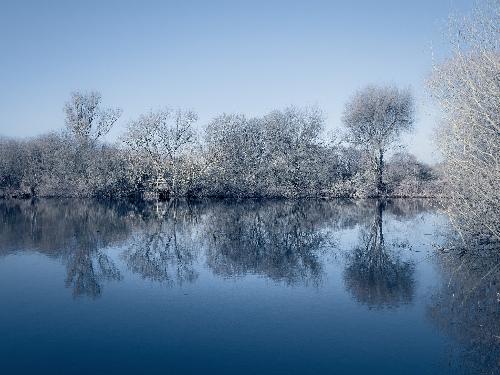 Winter Reflections by Sarah Walters