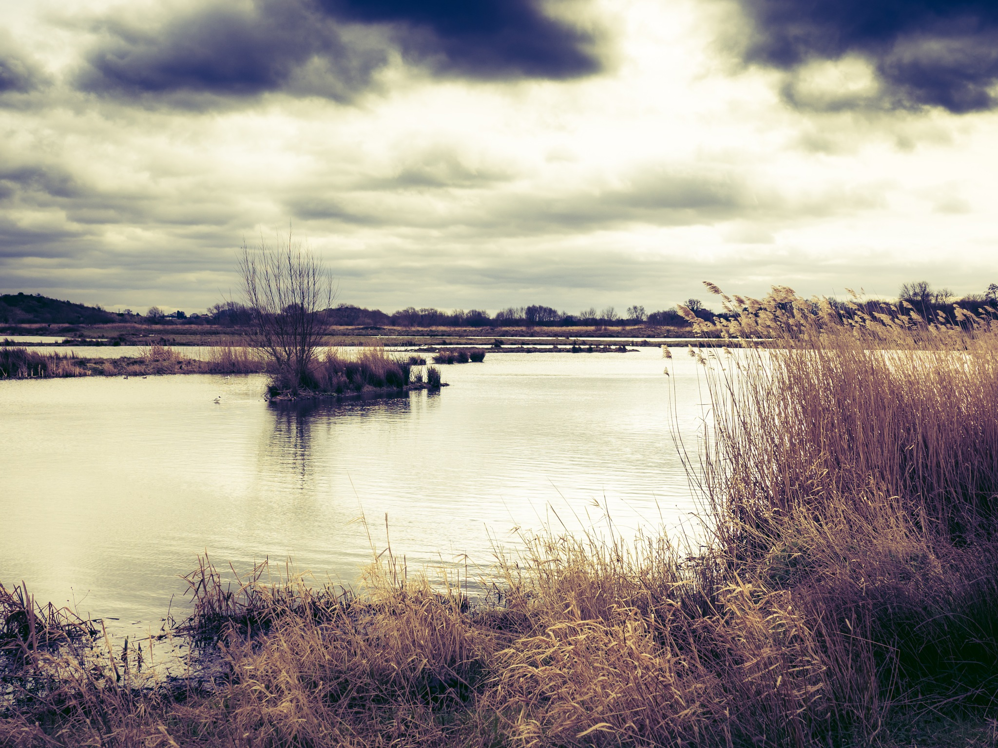 Middleton Lakes by Sarah Walters
