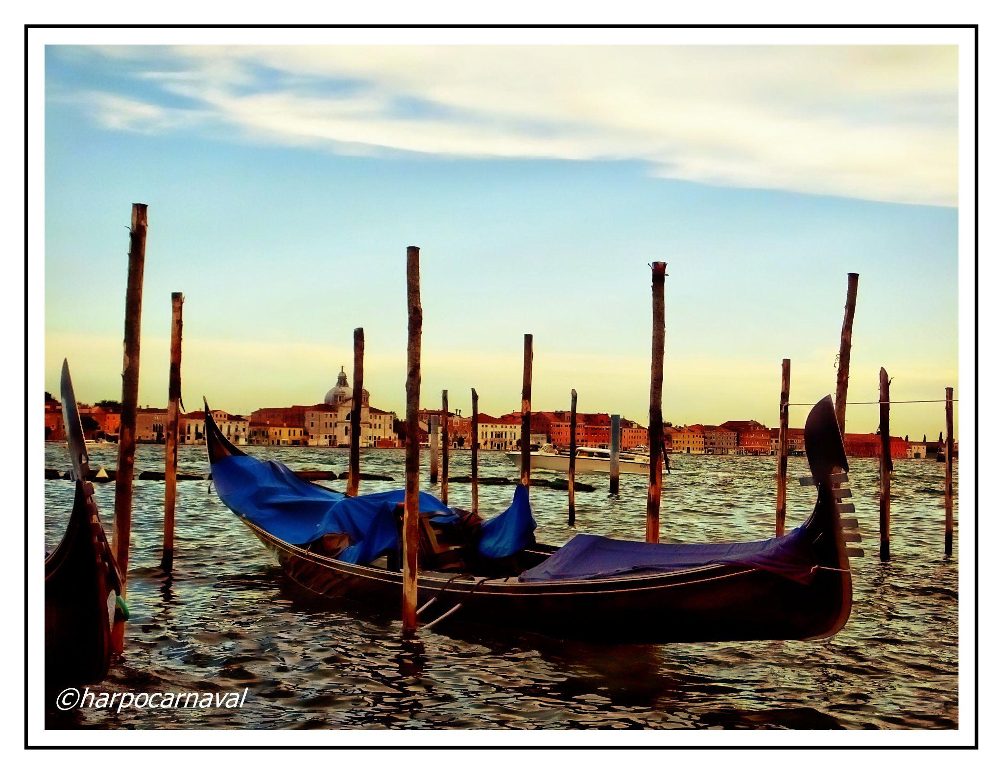 Venice by Harpocarnaval Photography