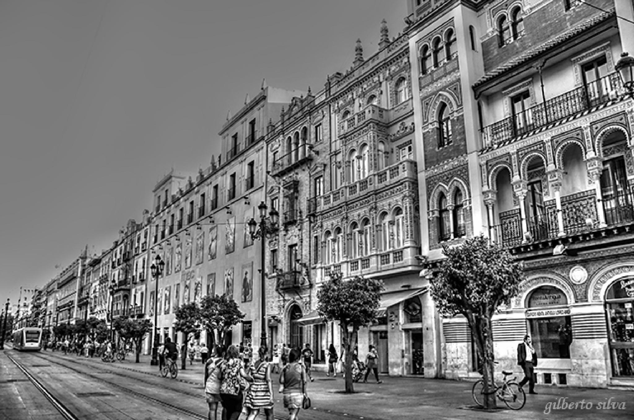 walking around town by Rui Santos Silva