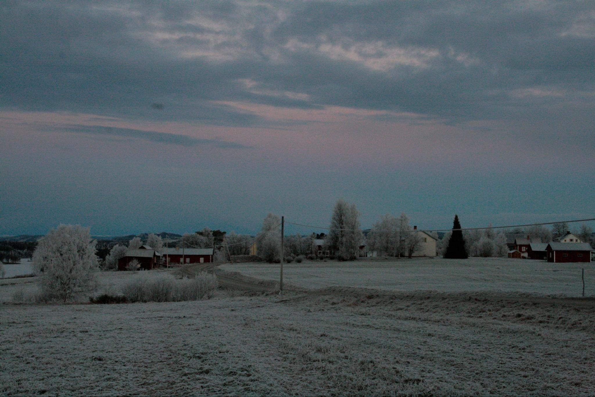 Winter wonderland by josiemattsson