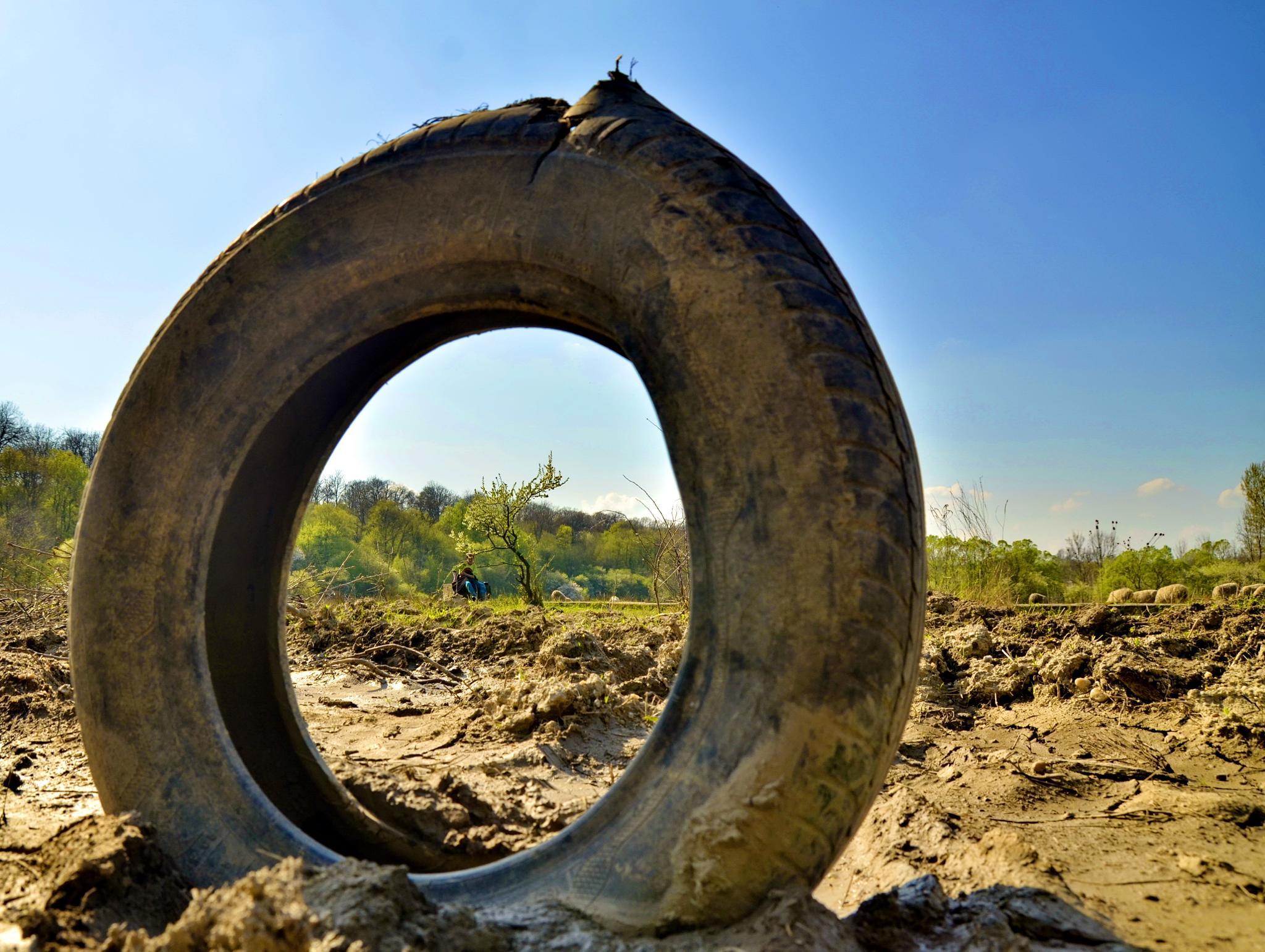 tire view by edyctin