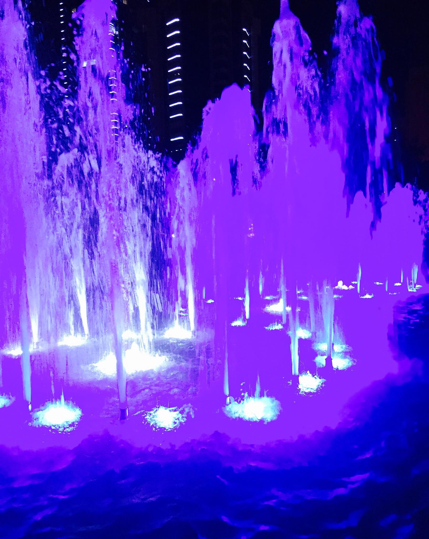 Violets by iensueno
