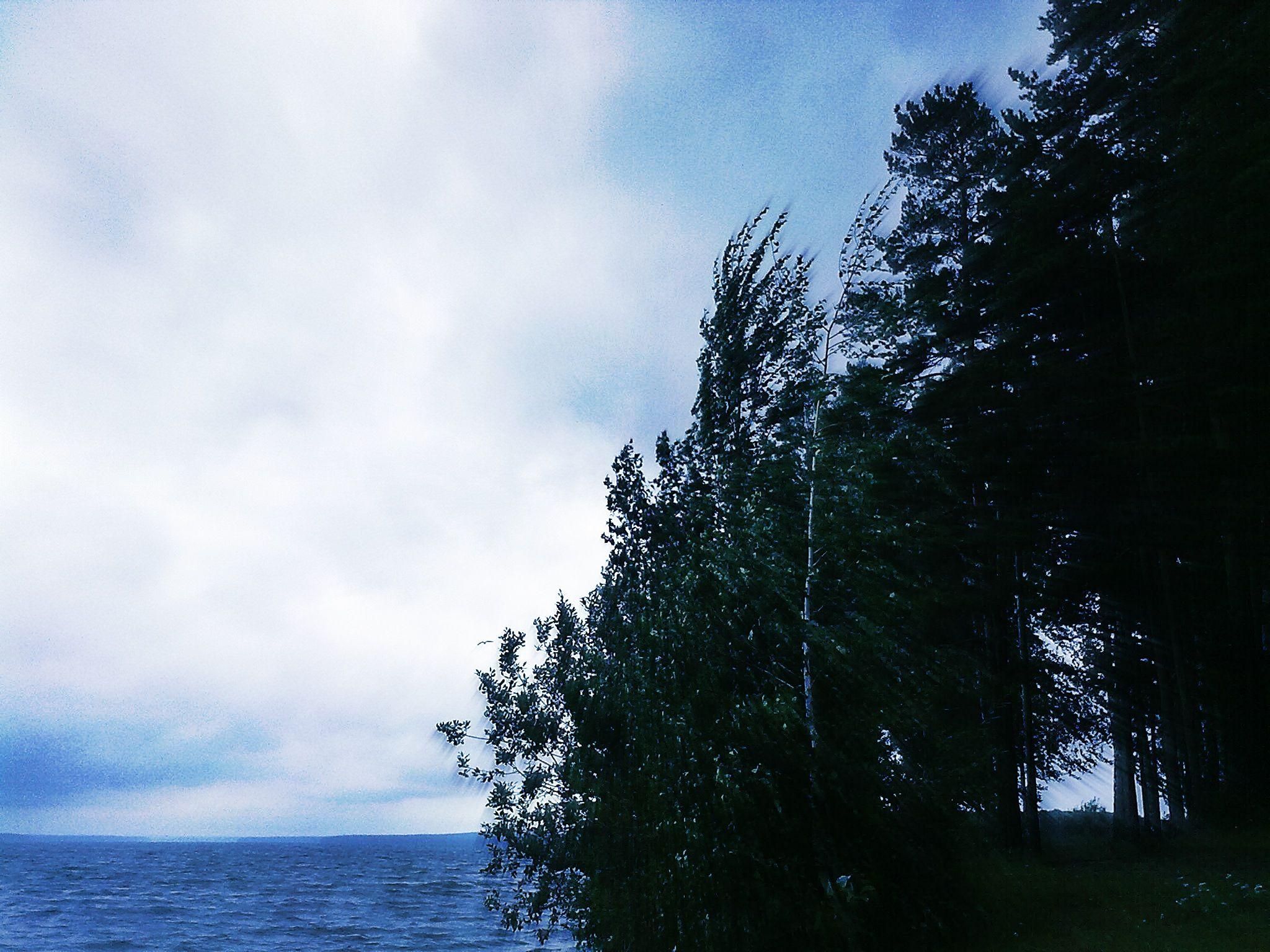 Lake by iensueno