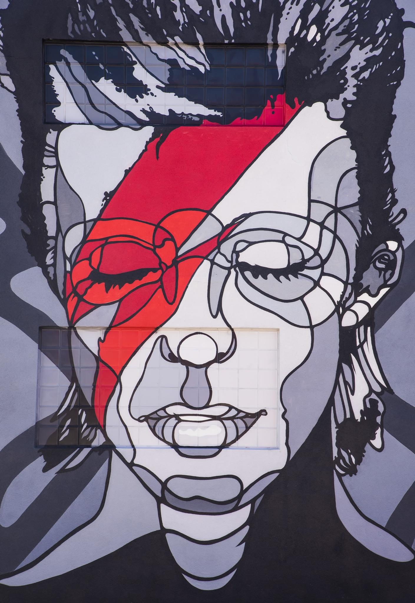 Wall Art David Bowie from Wynwood, Miami by Doctoral