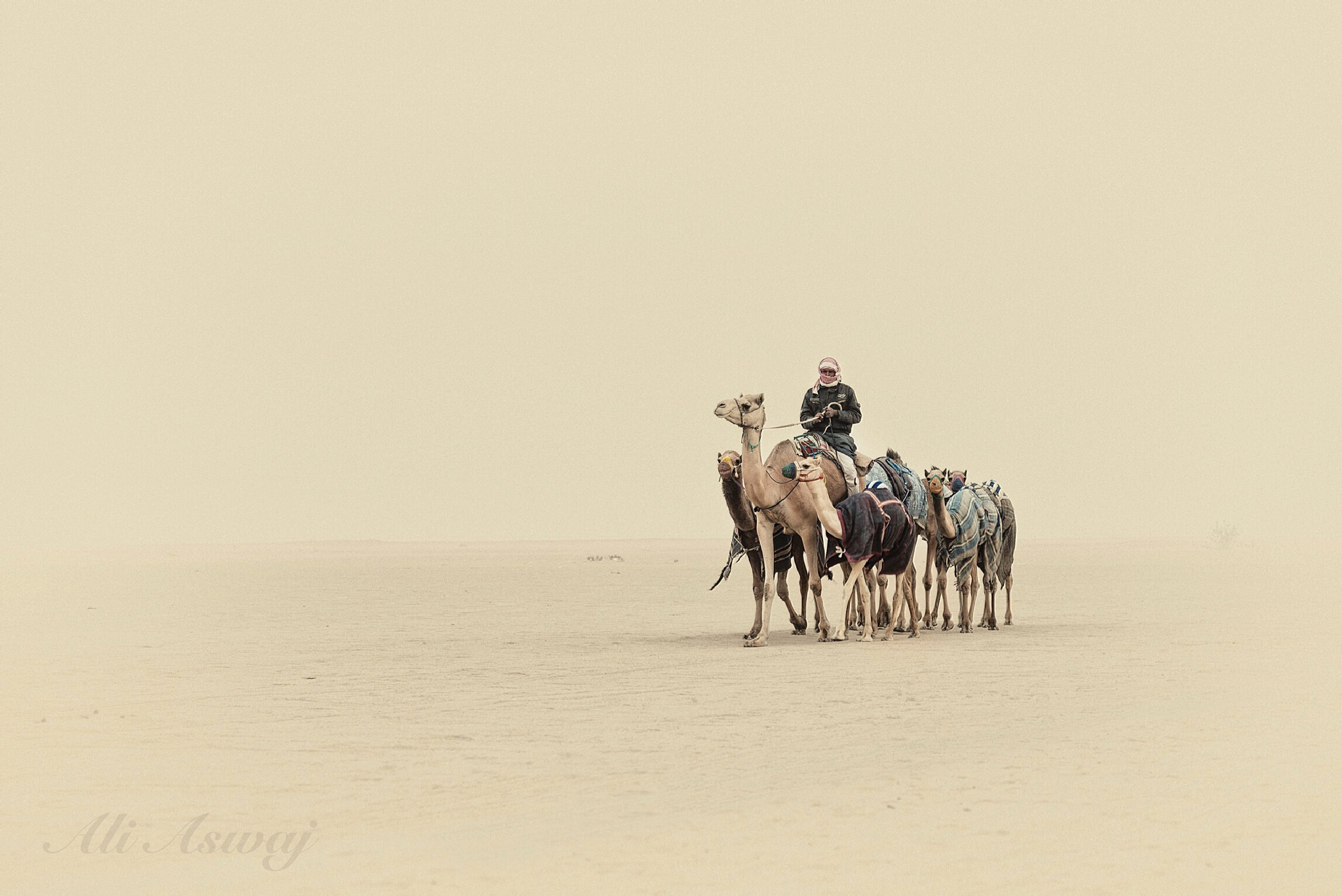 During the Dust by AliAswaj
