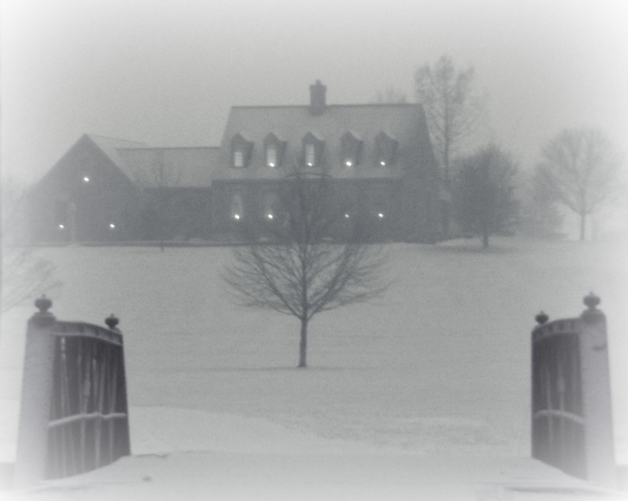A Winter Wonder  by openeyes822