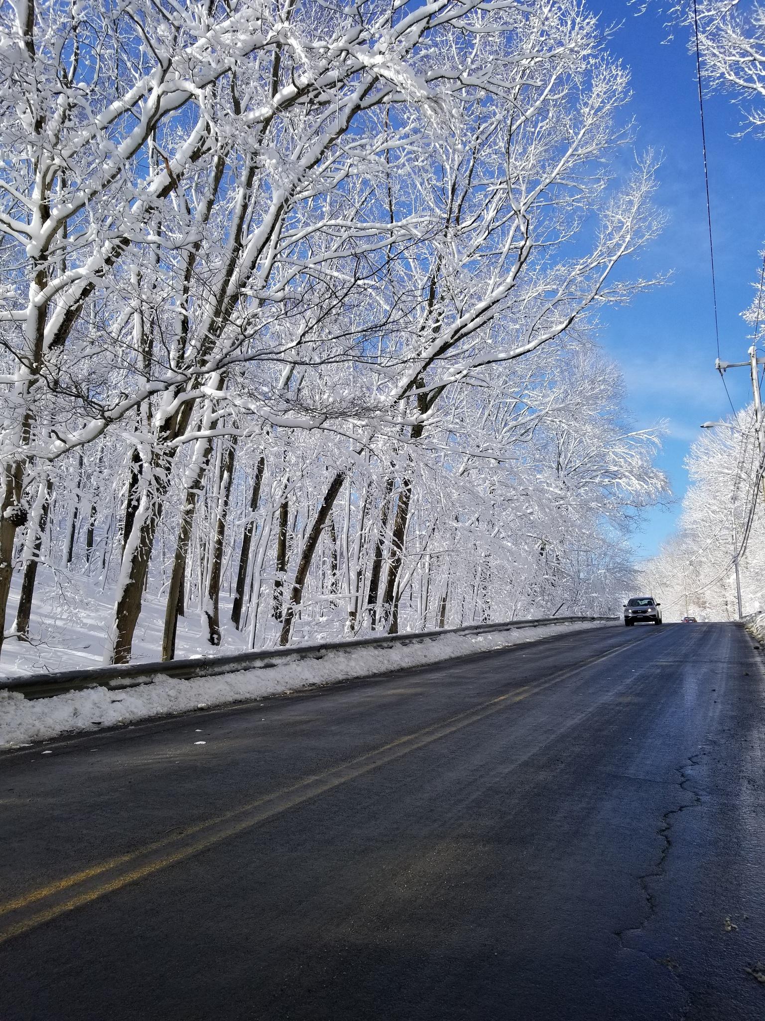Winter Road by Dru Coleman