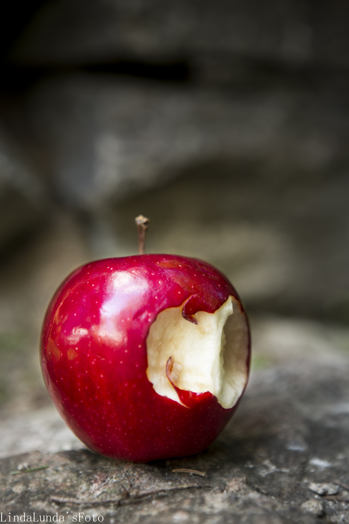 Snow Whites apple  by Linda Augustsson
