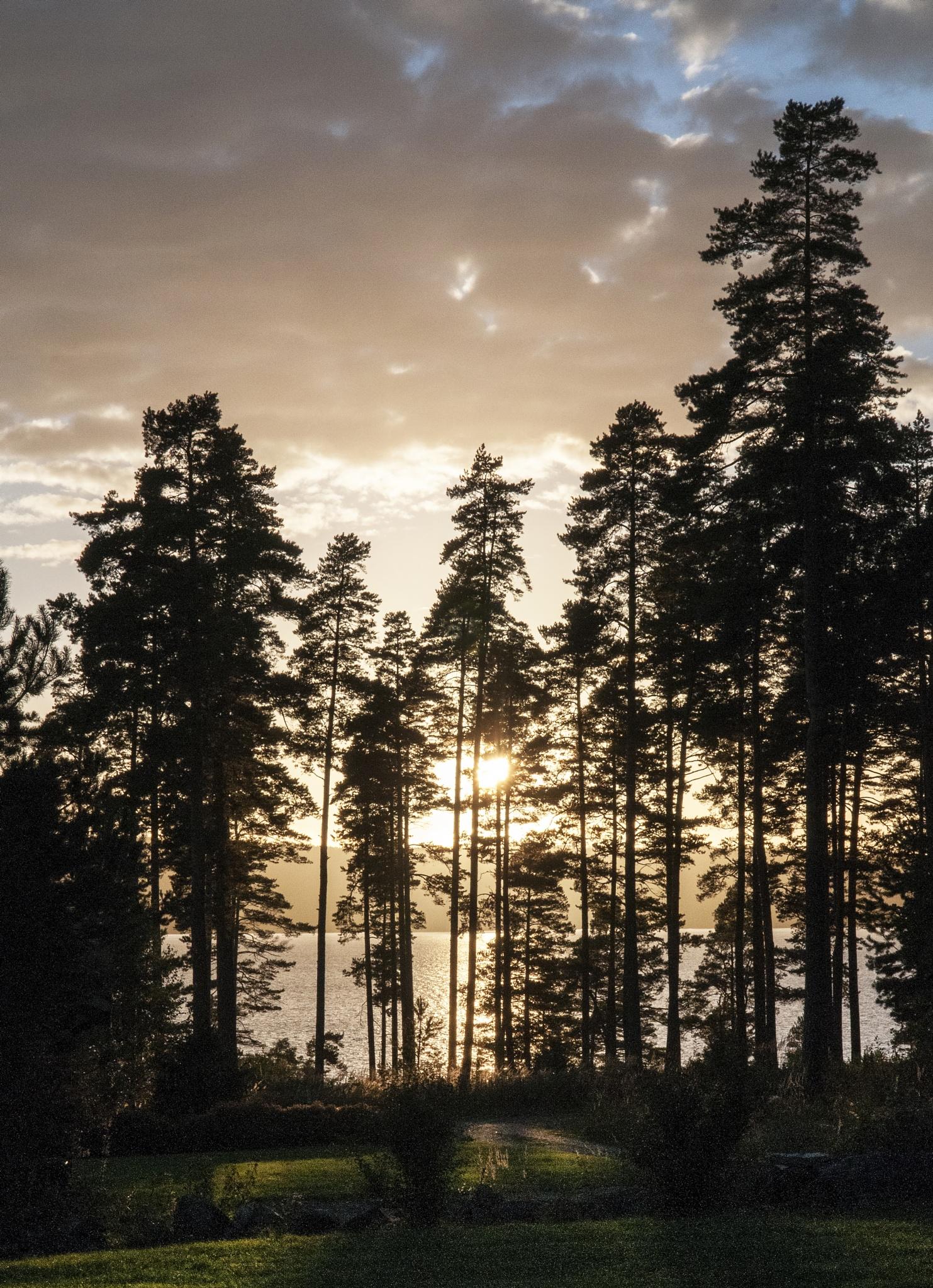 Sundown Glafsfjorden by Jan