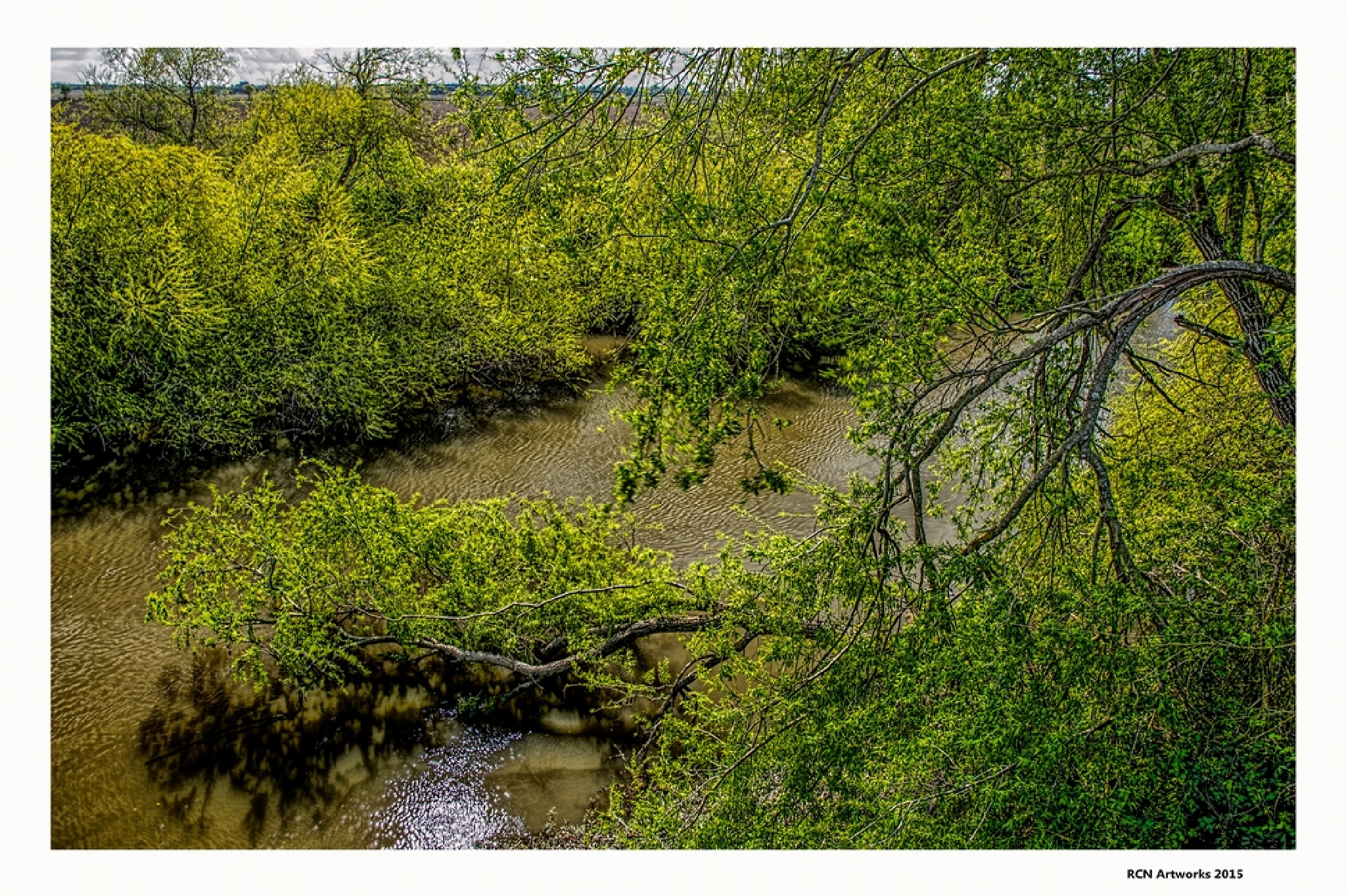 Another Green World  by Ricardo Castro Nunes