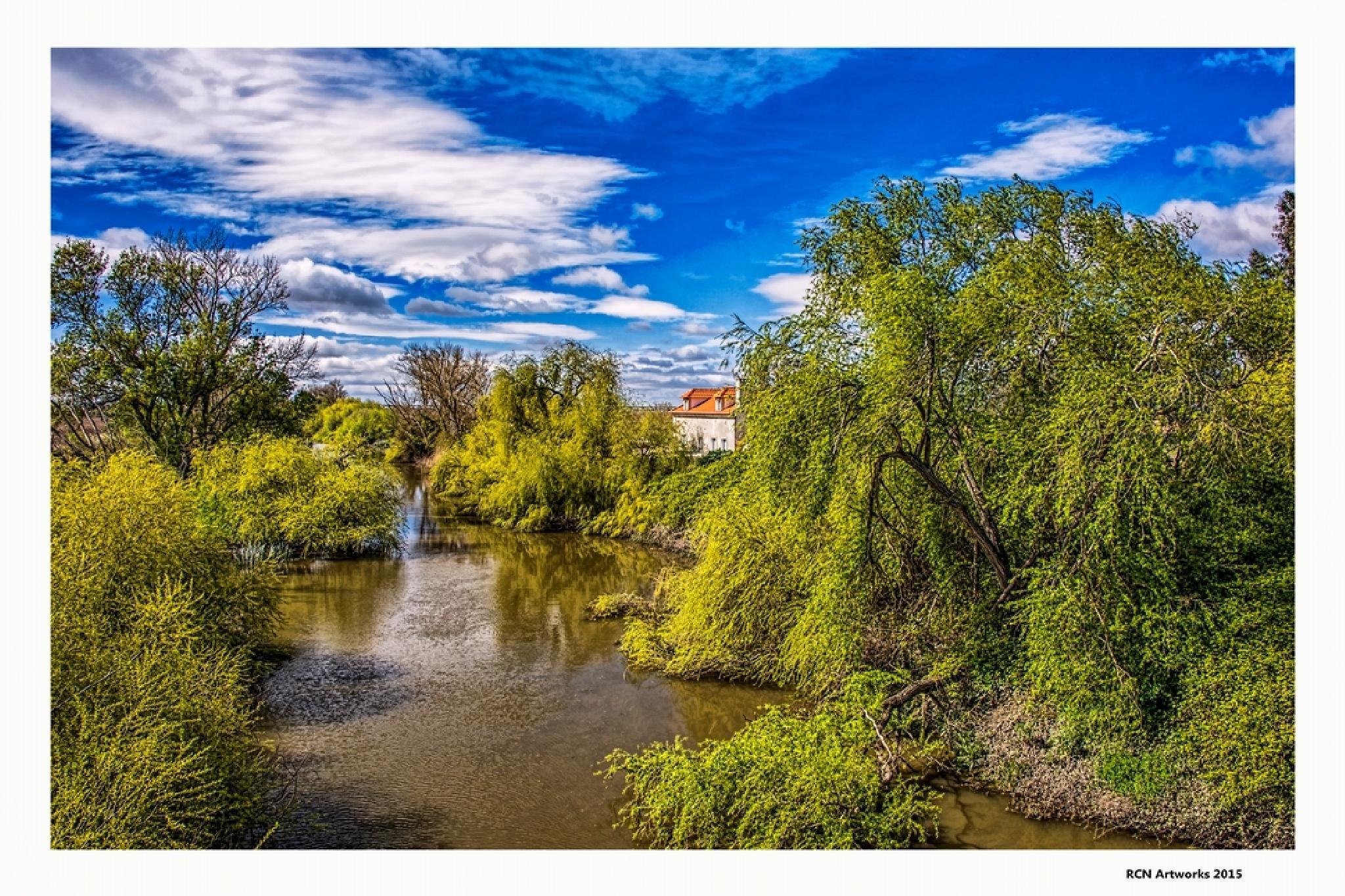 River House  by Ricardo Castro Nunes