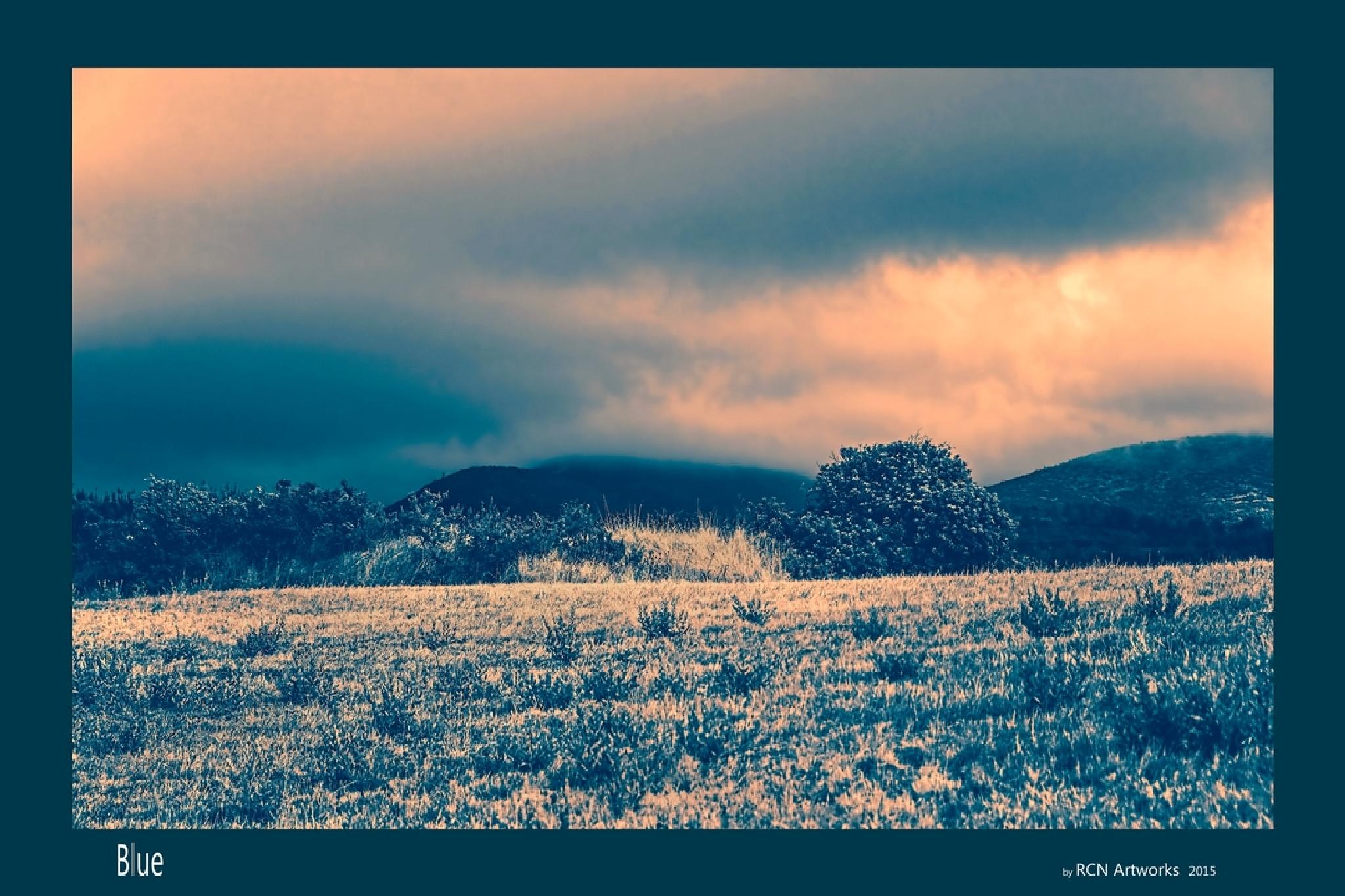 Blue by Ricardo Castro Nunes