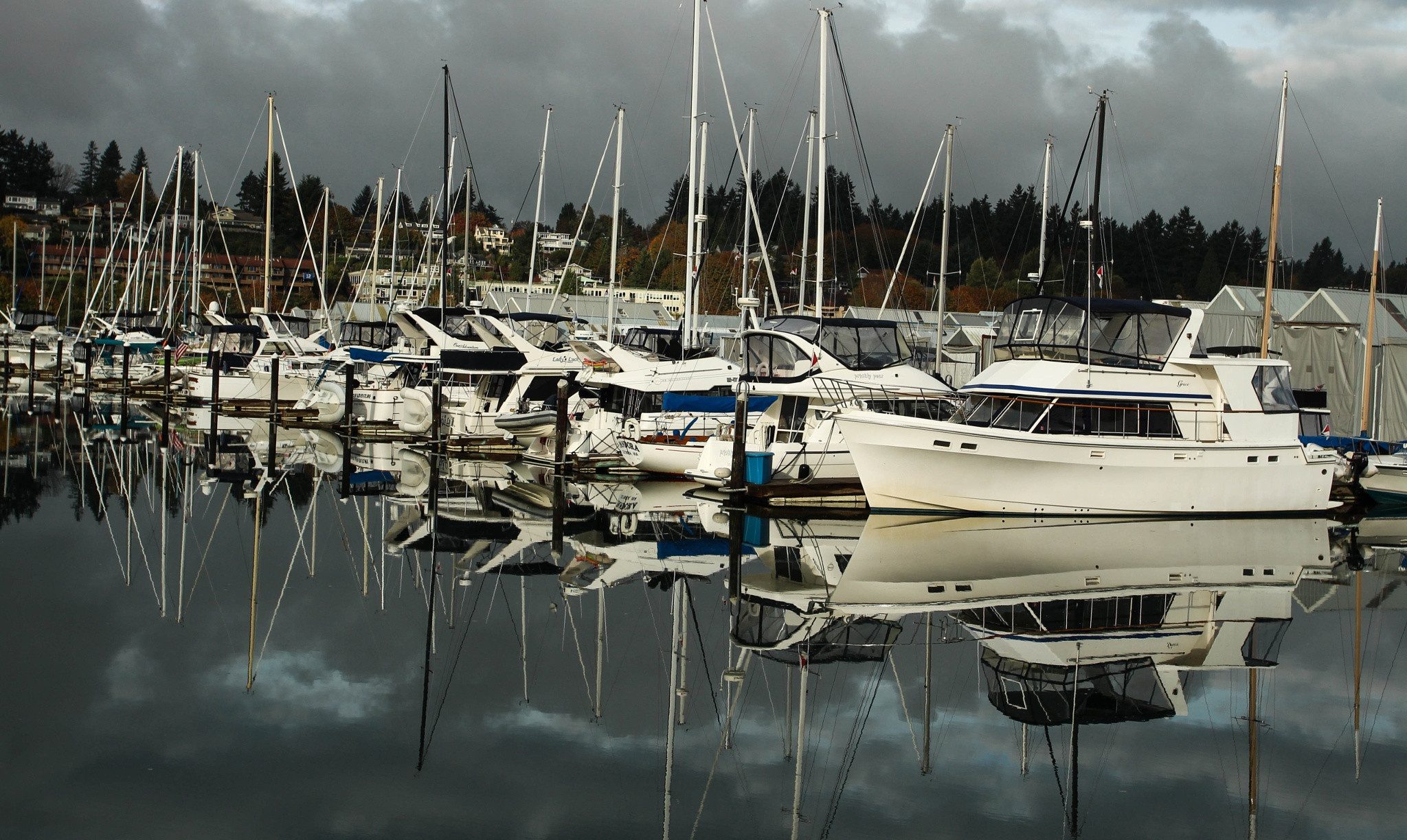 Boats, Boats, and More Boats by devynfduvall
