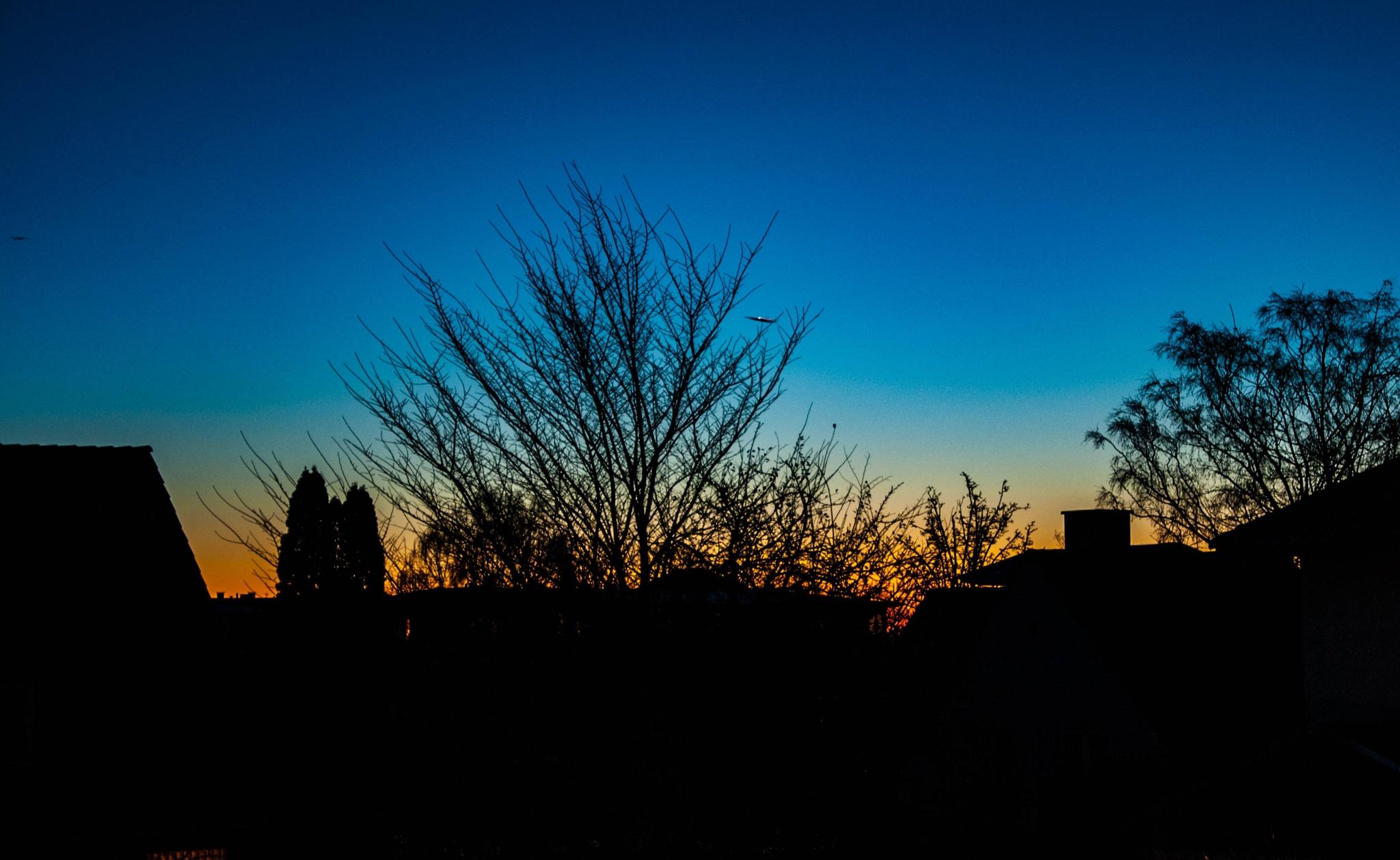 Sunrise by Elfort