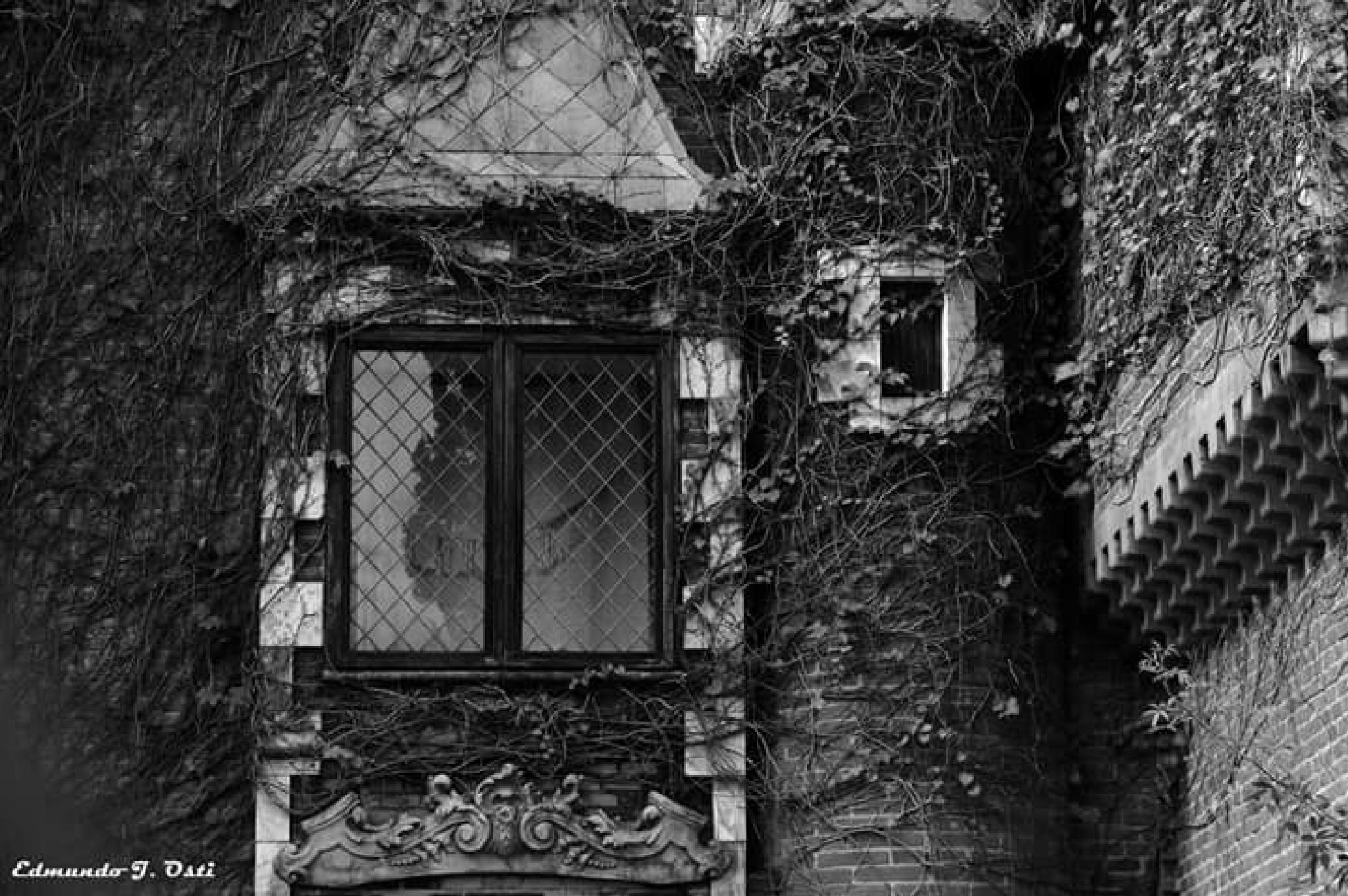 Castelo by Edmundo J. Osti