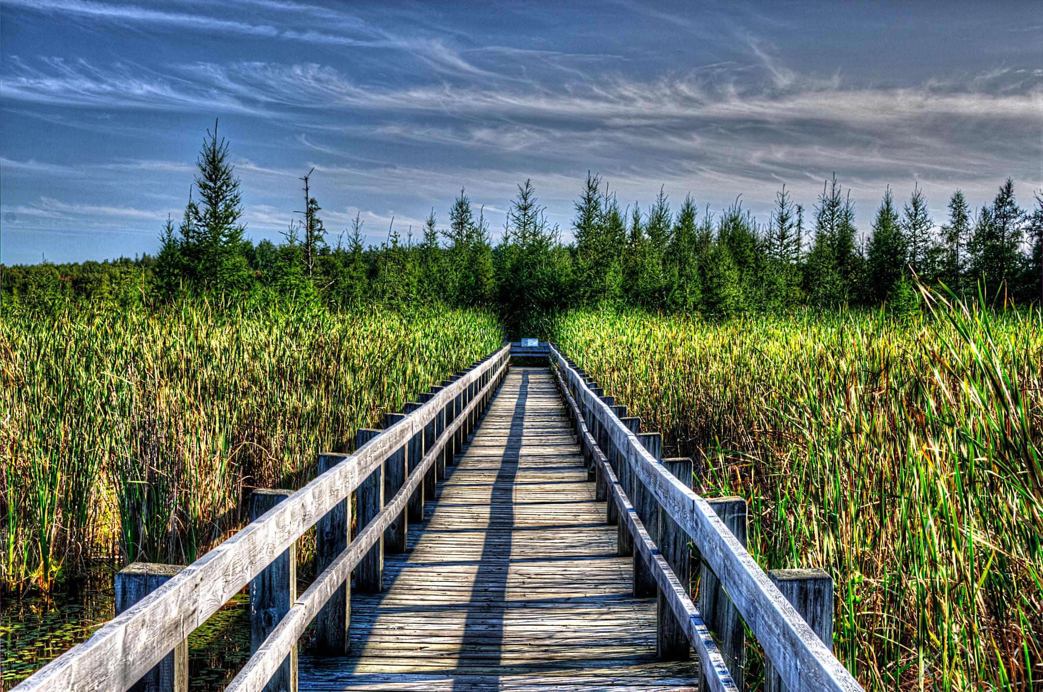 Afternoon On The Boardwalk by Paul Deveau
