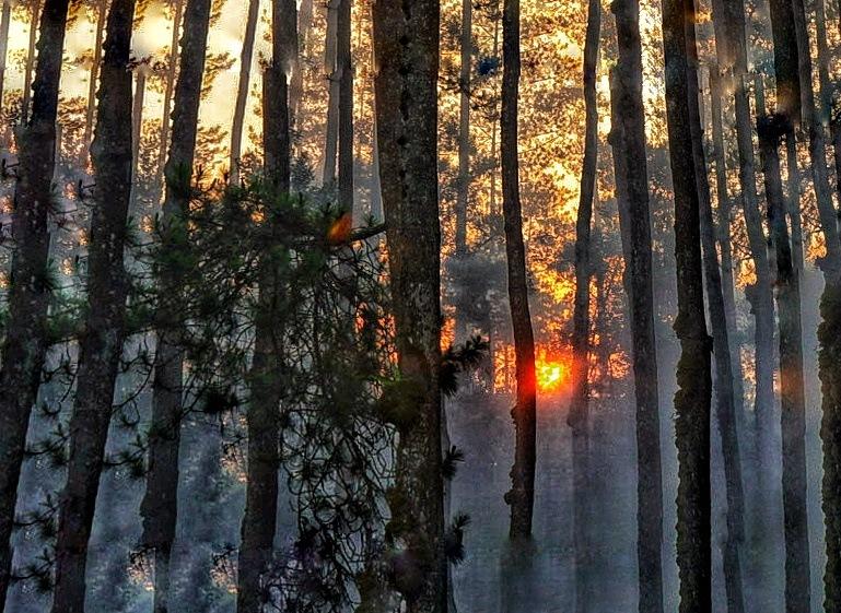 sunset by Andi Kho