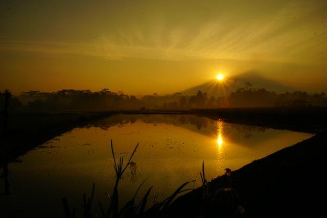 Sunrise  by Andi Kho