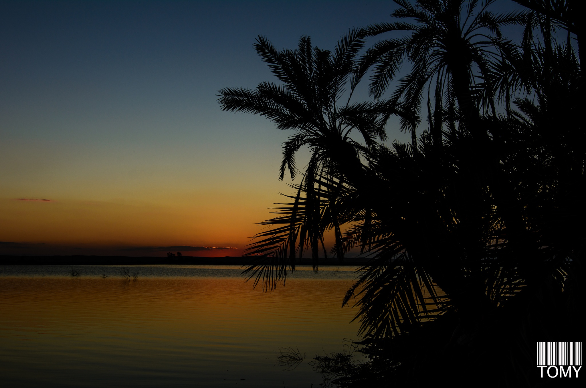 sunset i Siwa by Hatem Tomy