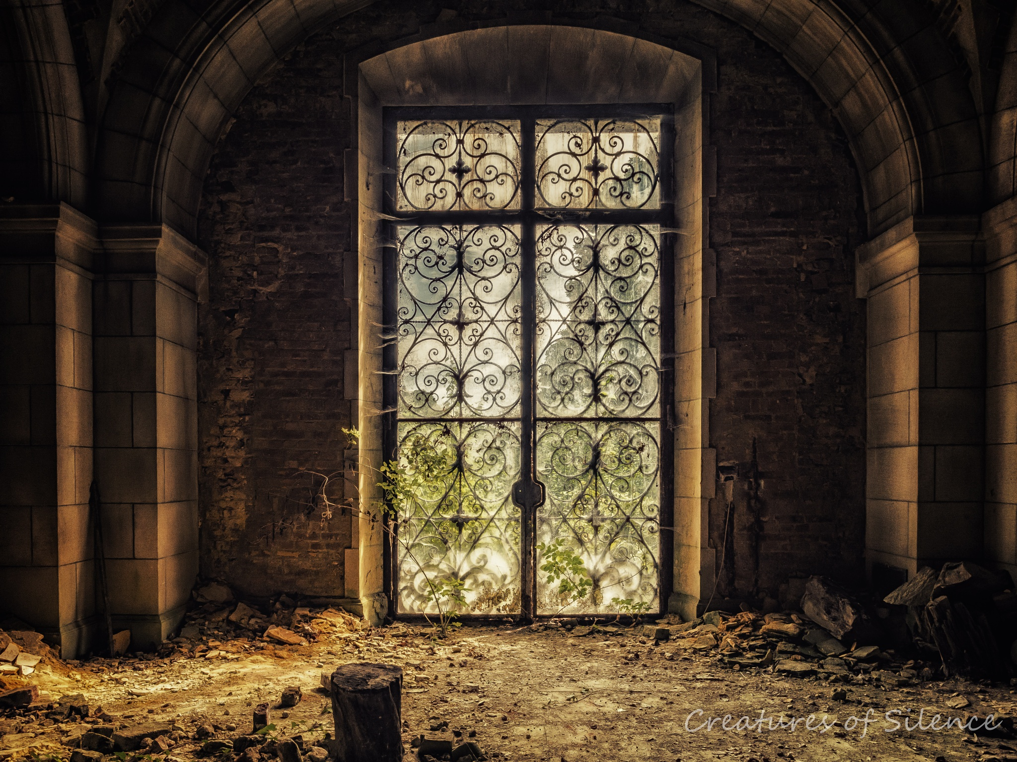 Fairytales come true by Harald Buise