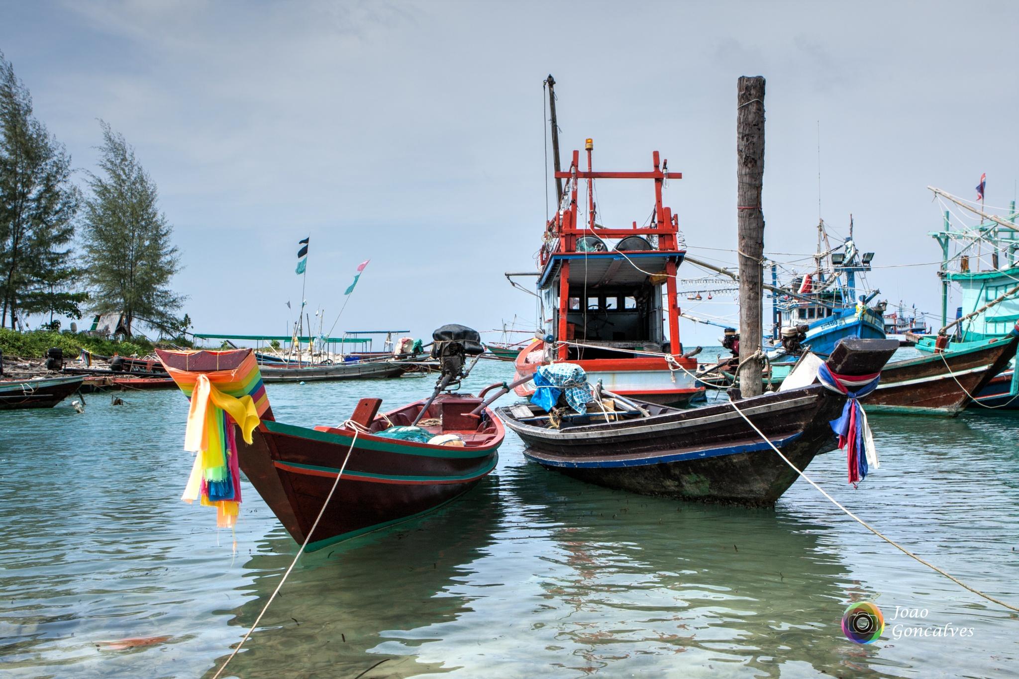 Fishing boats by Joao Goncalves