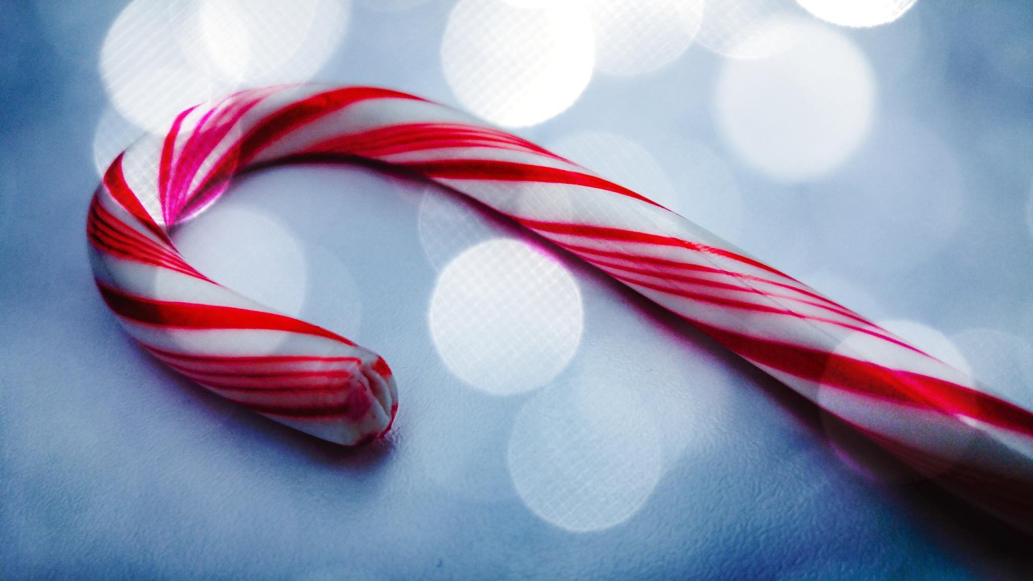 Christmas Cane by Erika Kehlet
