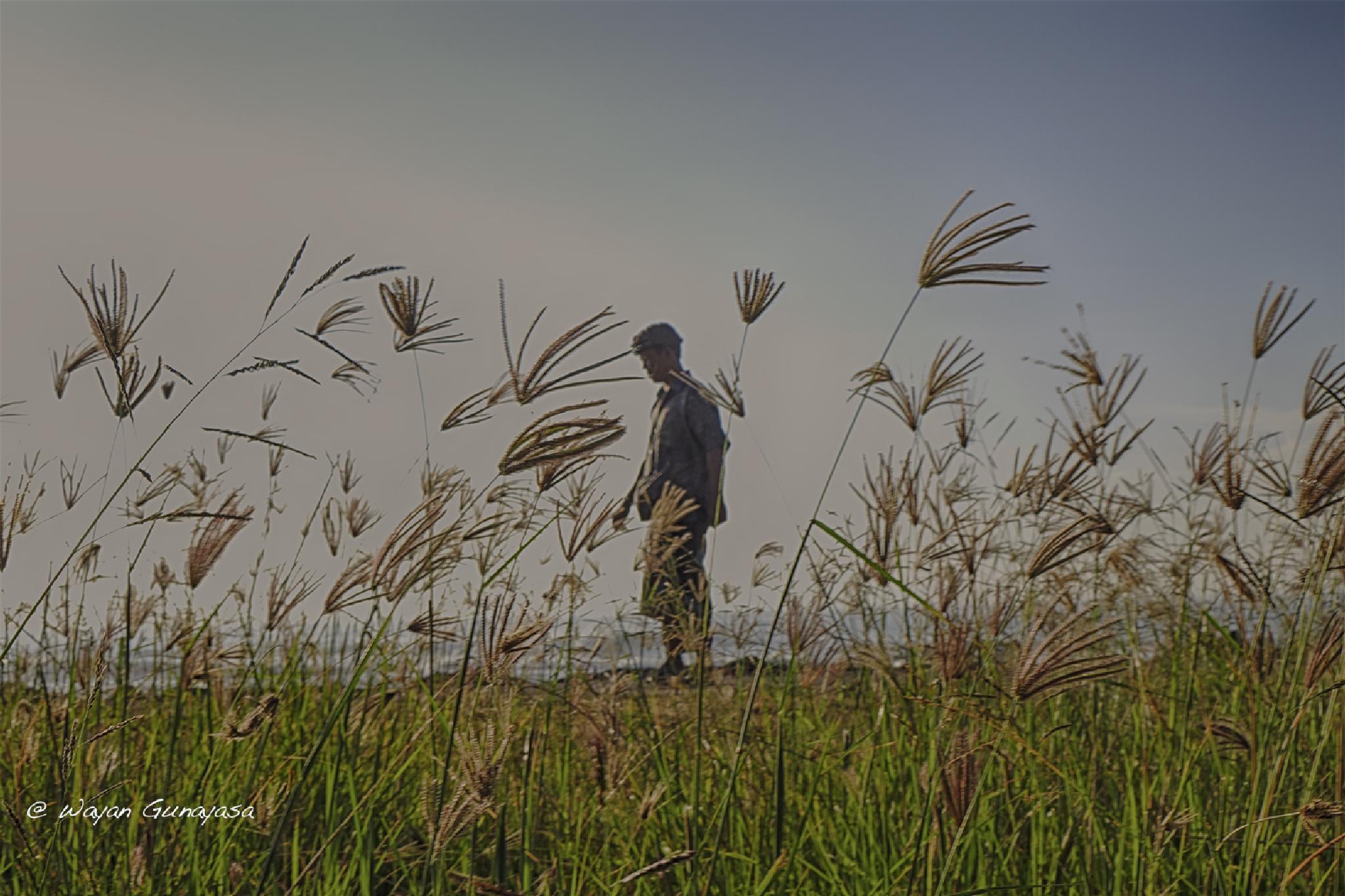 Between the grass by yangunayasa63