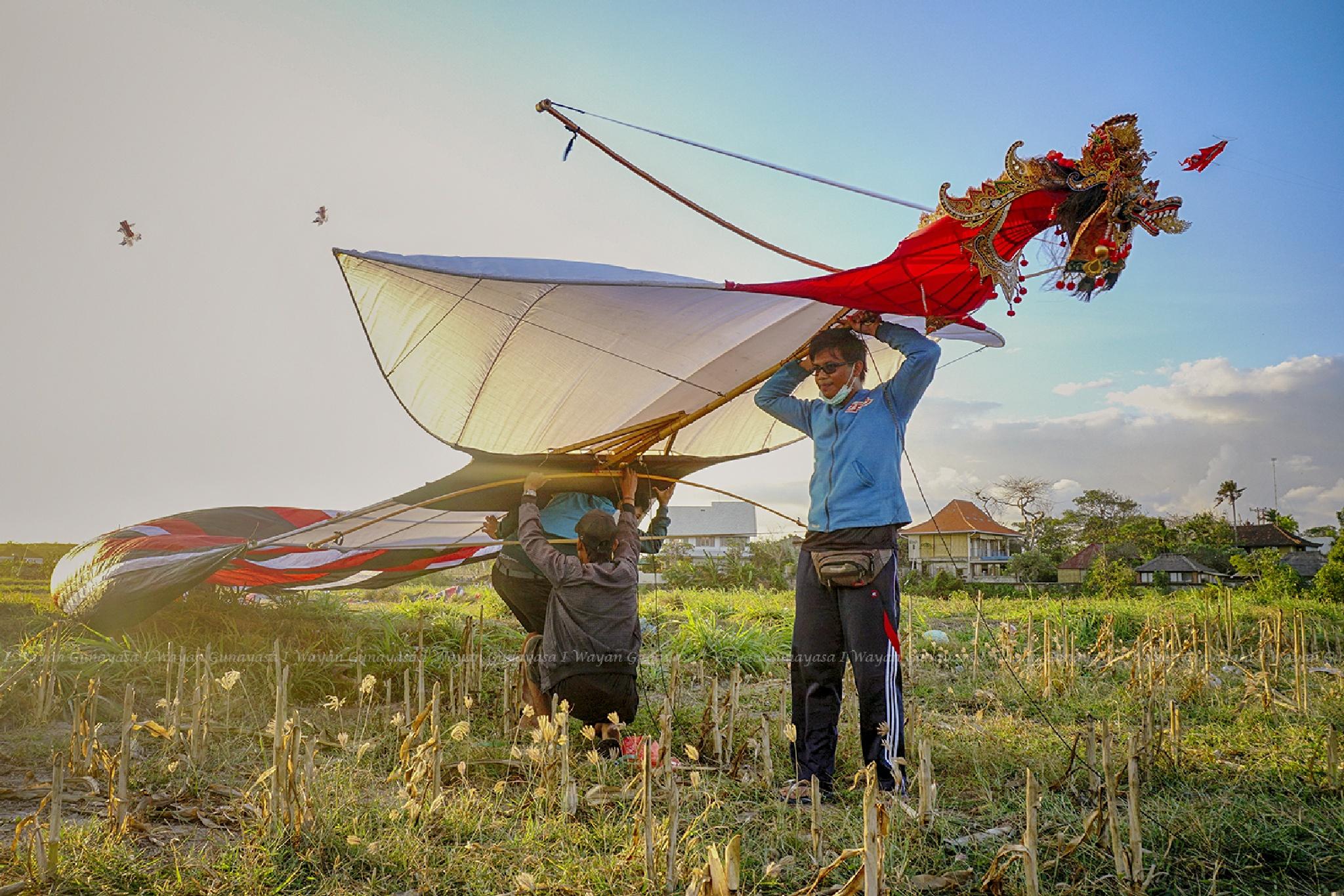 Big kite by yangunayasa63