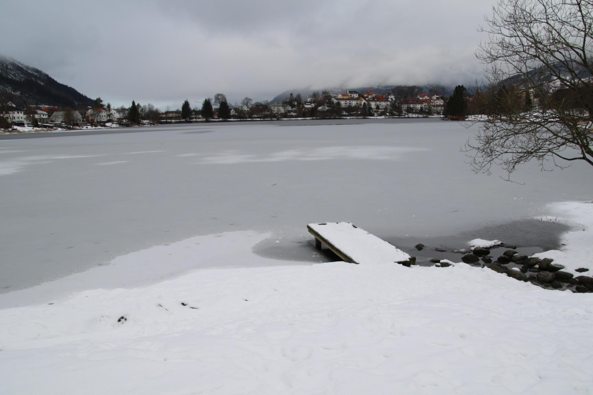 Winter time by Atilla Gunhan Photograpy