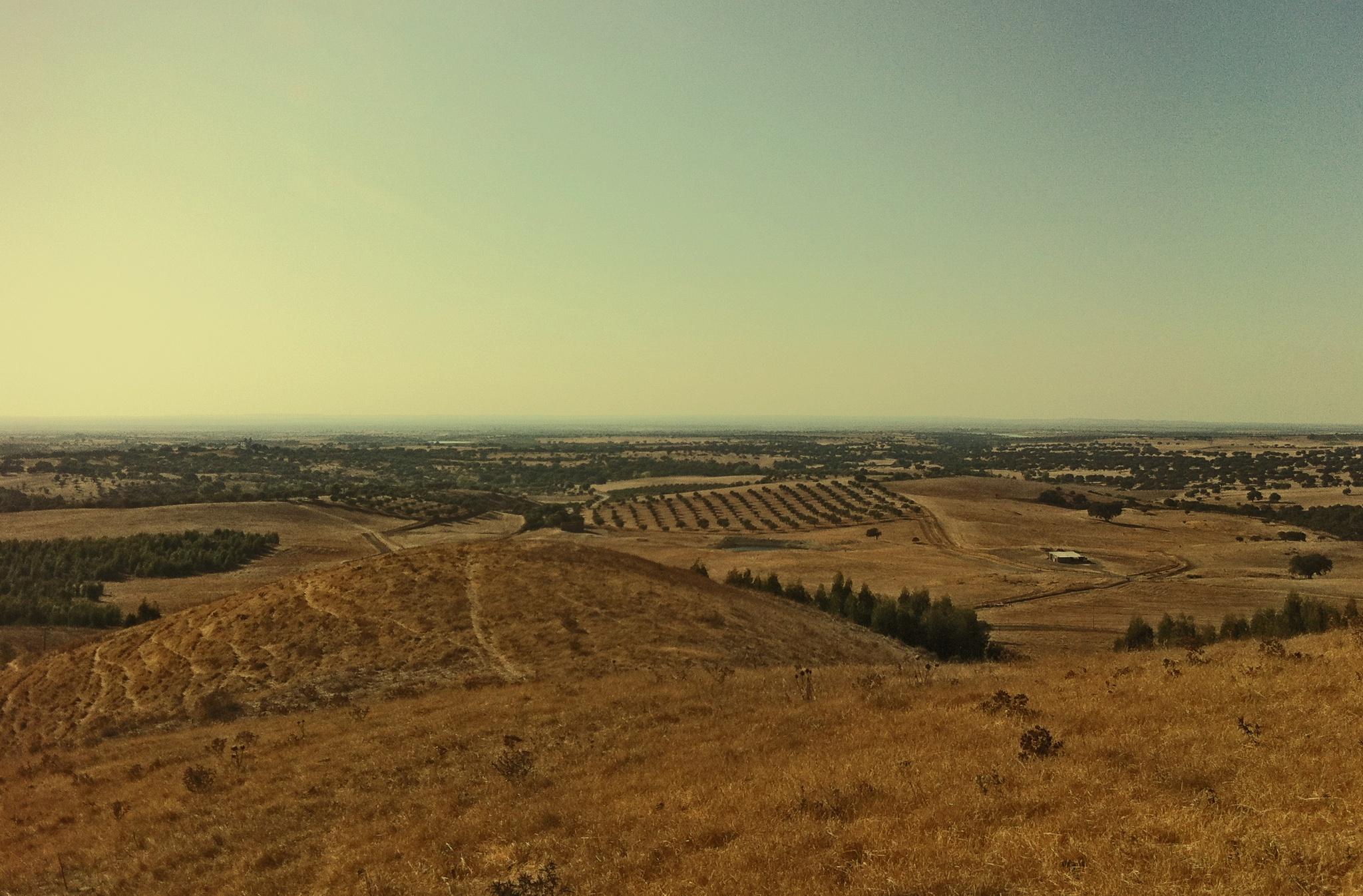 The Alentejo Plains by Nuno Maldonado Tuna