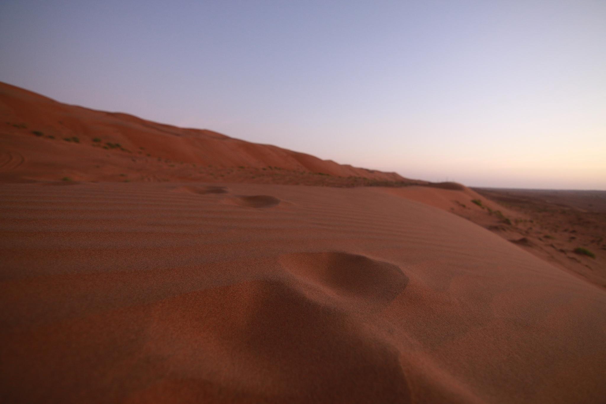 Wahiba - (Oman)  by DirtyMinded