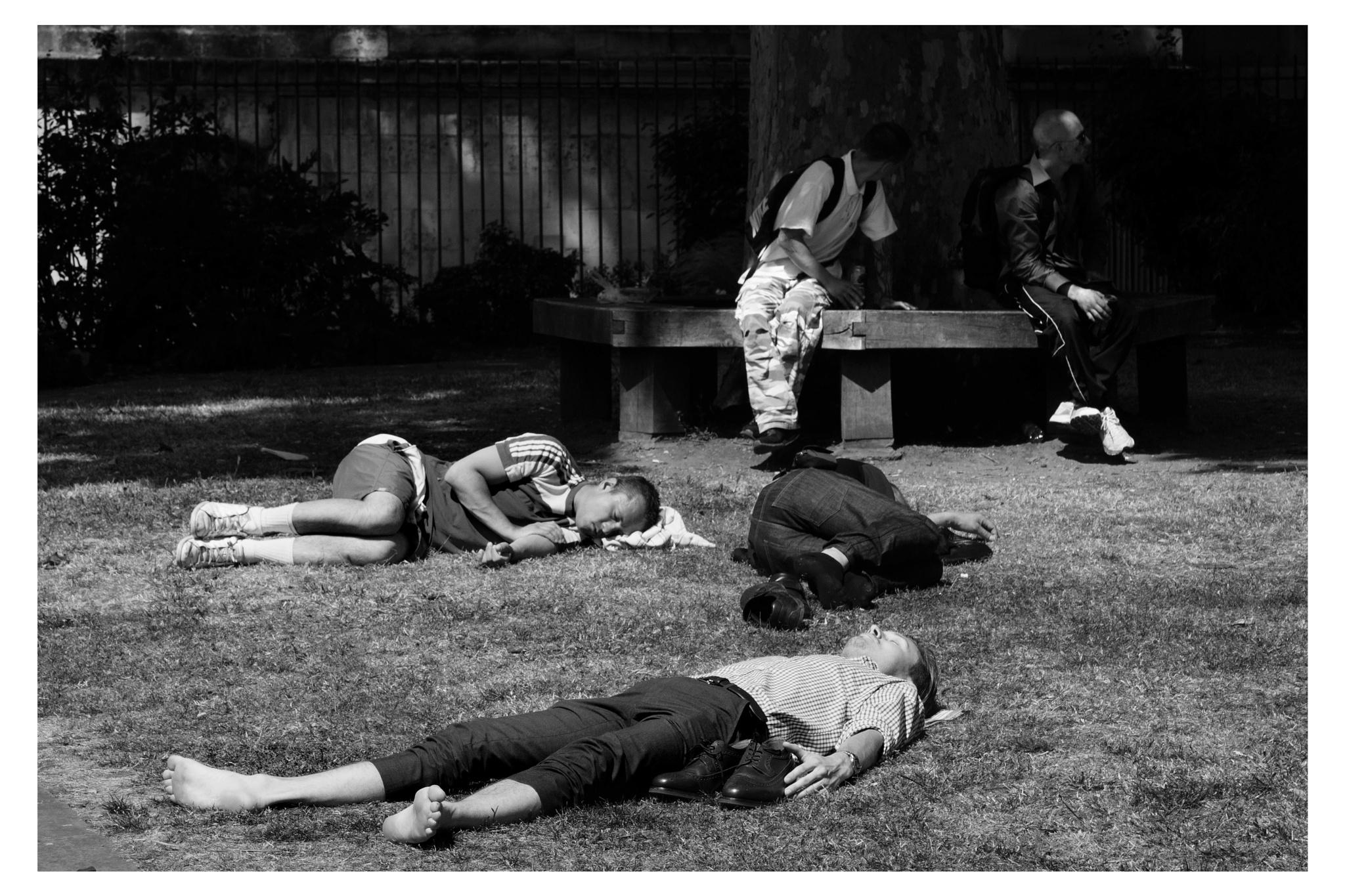 On Grass by Jeff Hubbard
