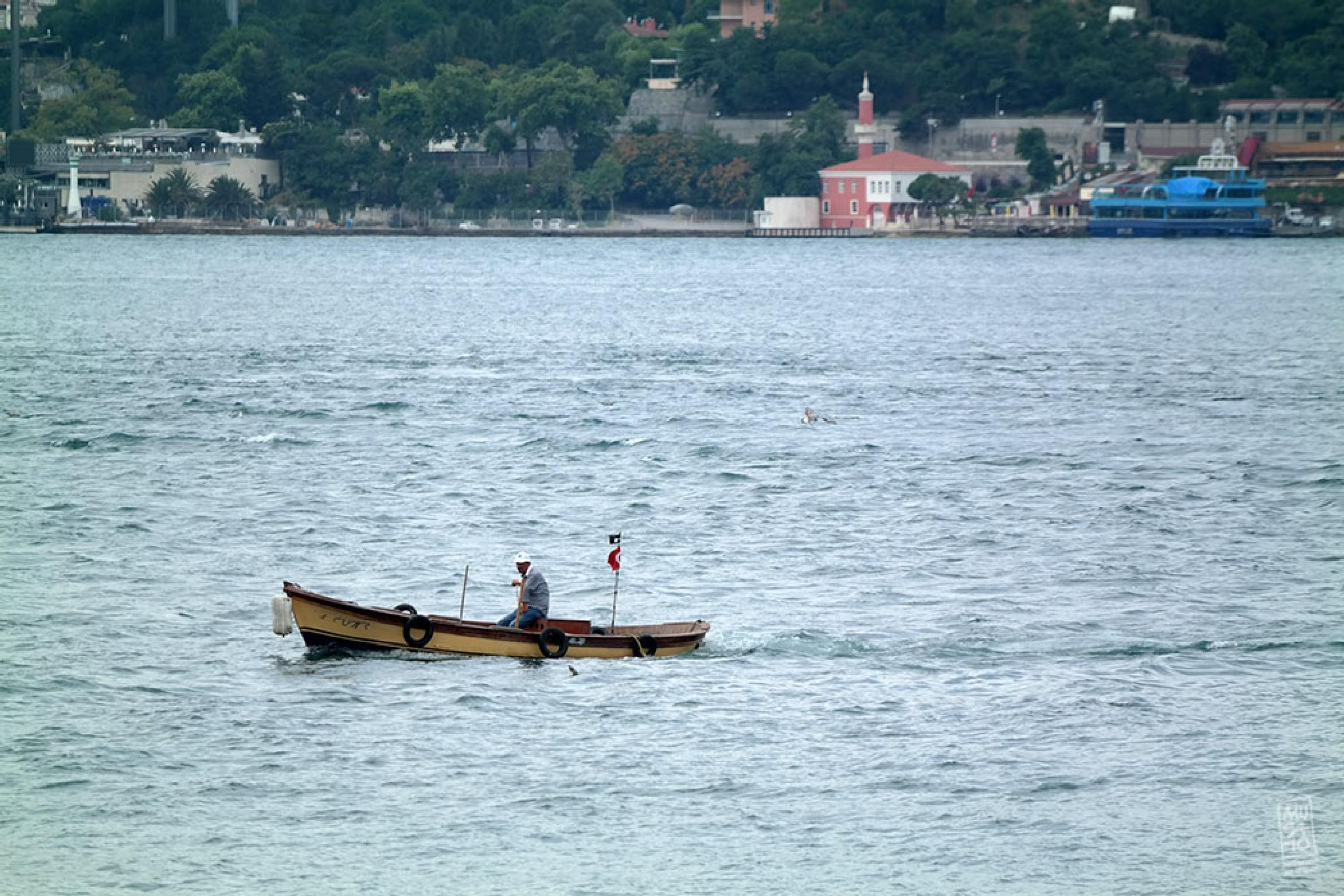 the boat by Musato